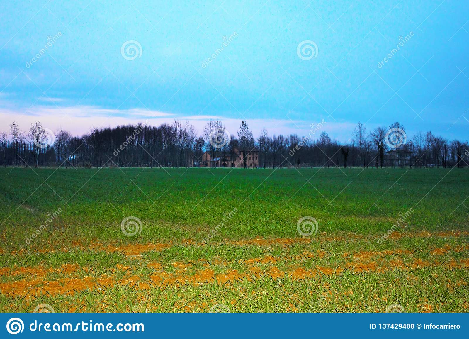landscape, freshly cultivated field with background the farm and a beautiful blue sky.