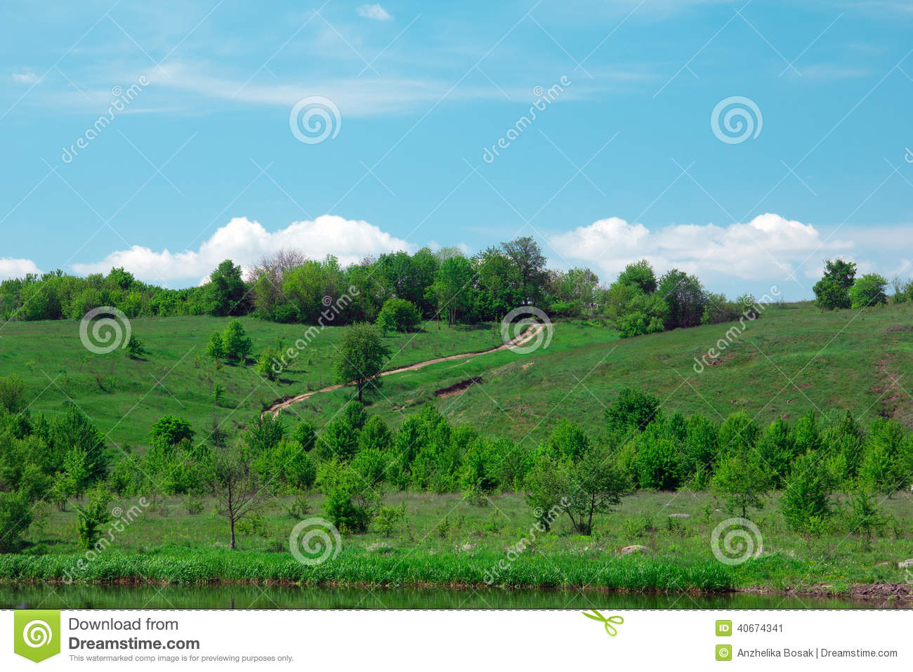 Landscape of a green grassy hills, valley, trees and blue sky an