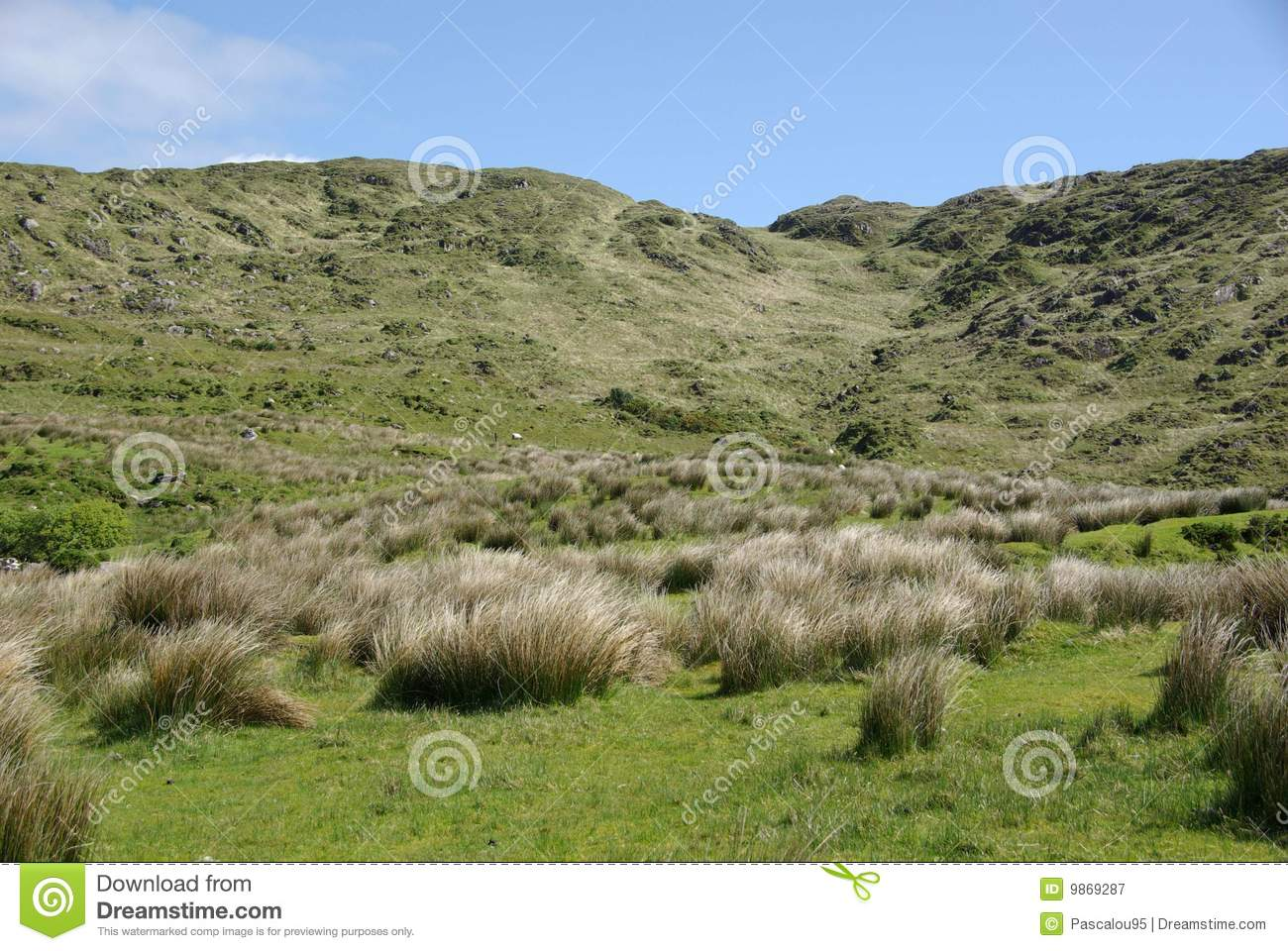 Landscape in ireland royalty free stock photography for Garden design kerry