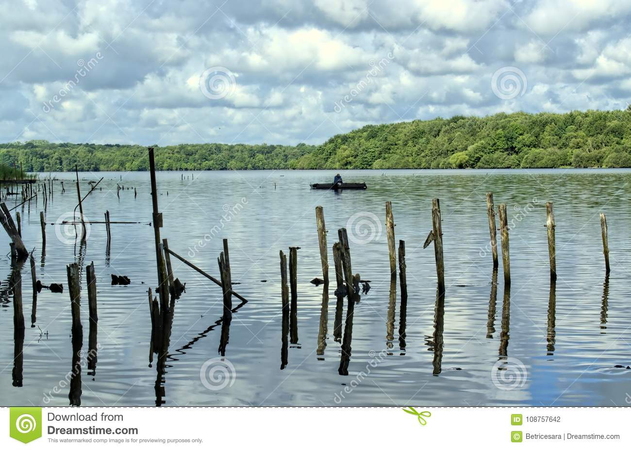 Paysage Concept nature, water, environment and paysage concept. stock photo - image