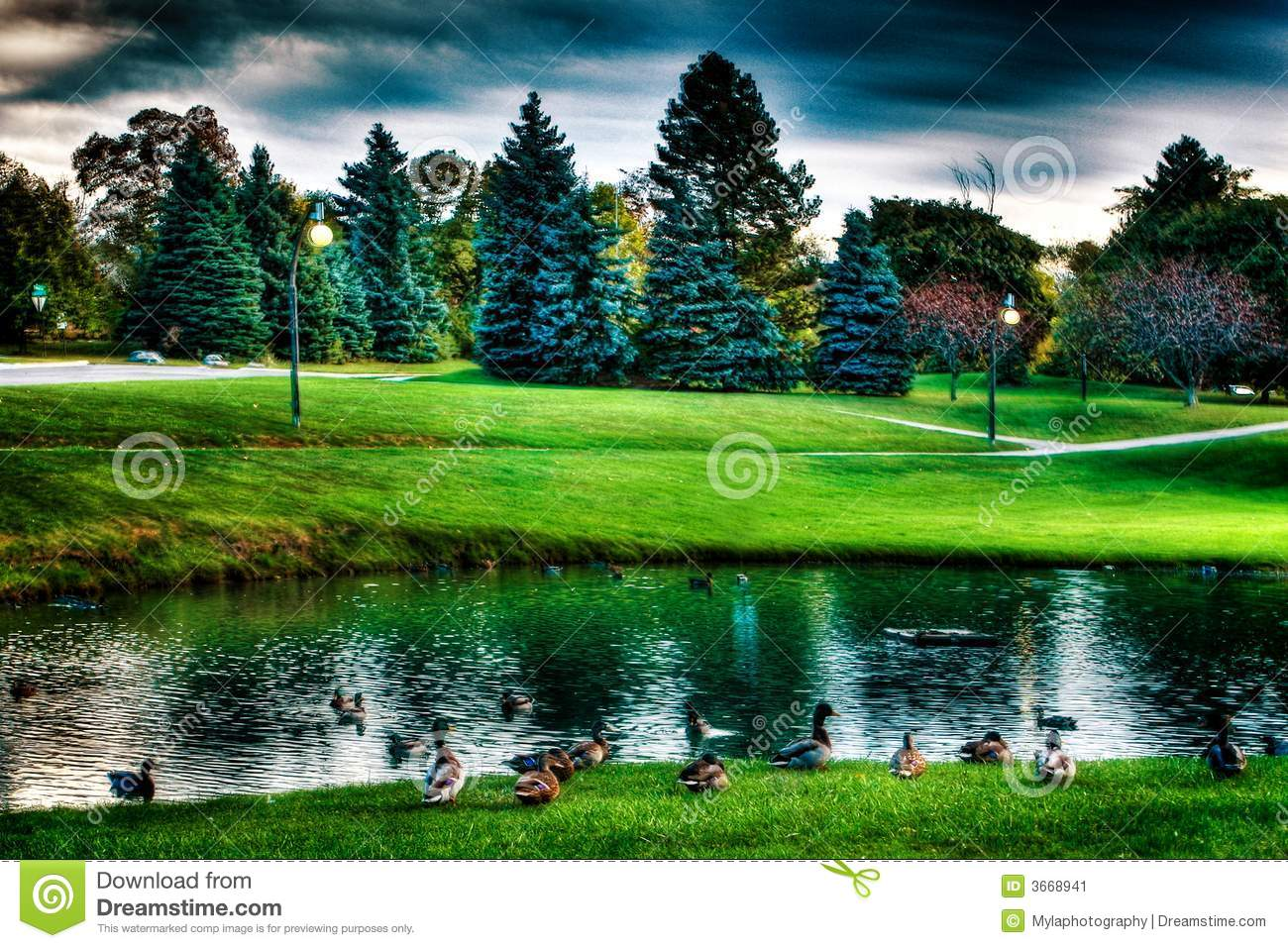 Landscape of lake and trees