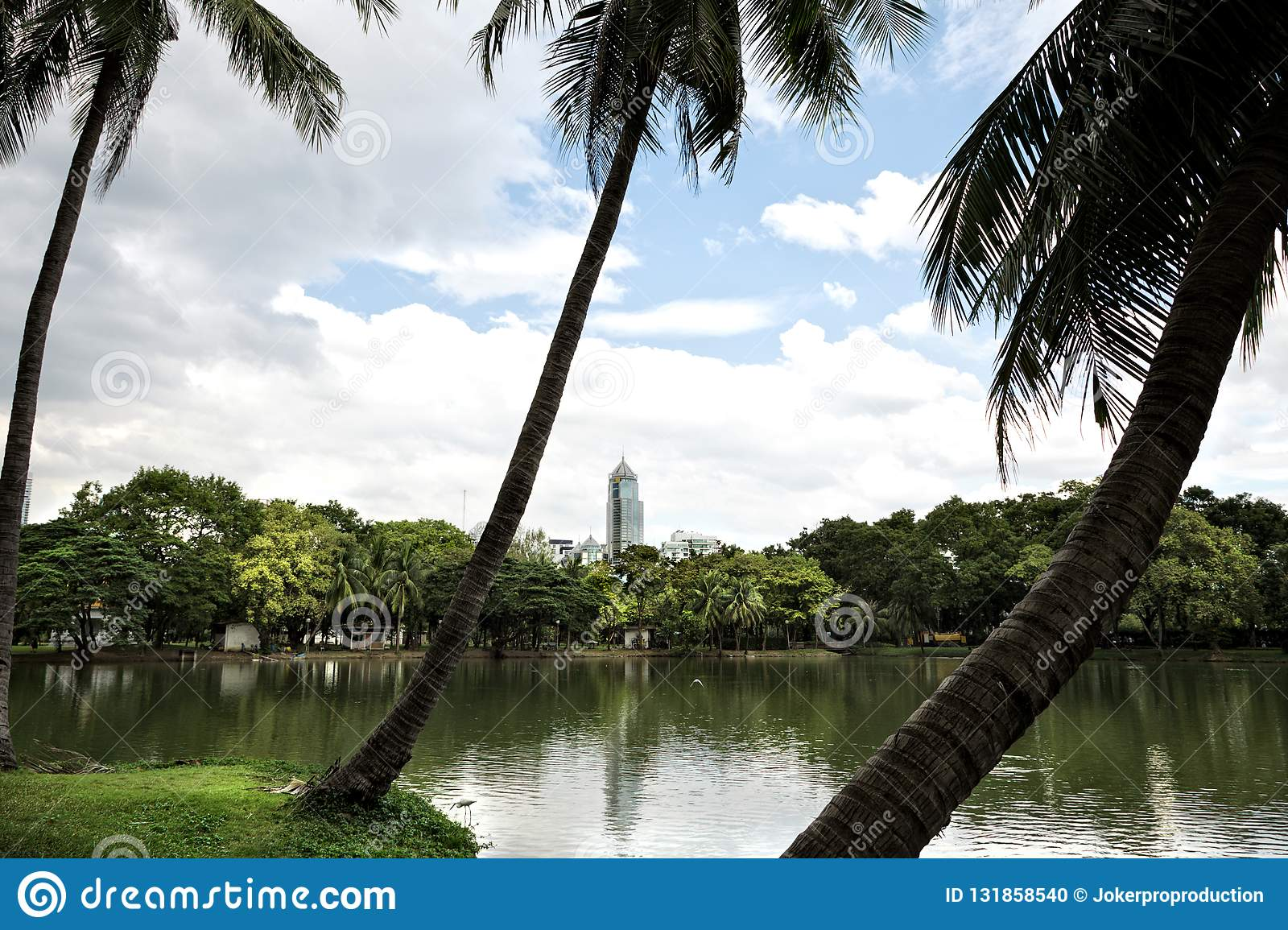 Landscape of lakeside view with palm trees in Lumphini Park in B