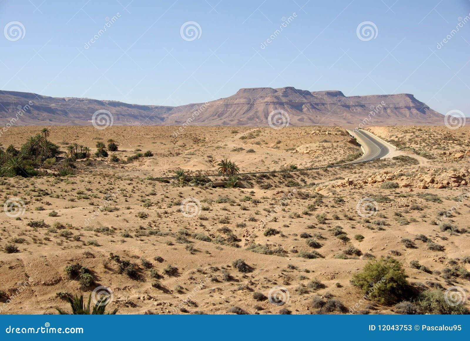 Camel Caravan Libya Landscape Wallpaper Landscape Photo Shared By ...