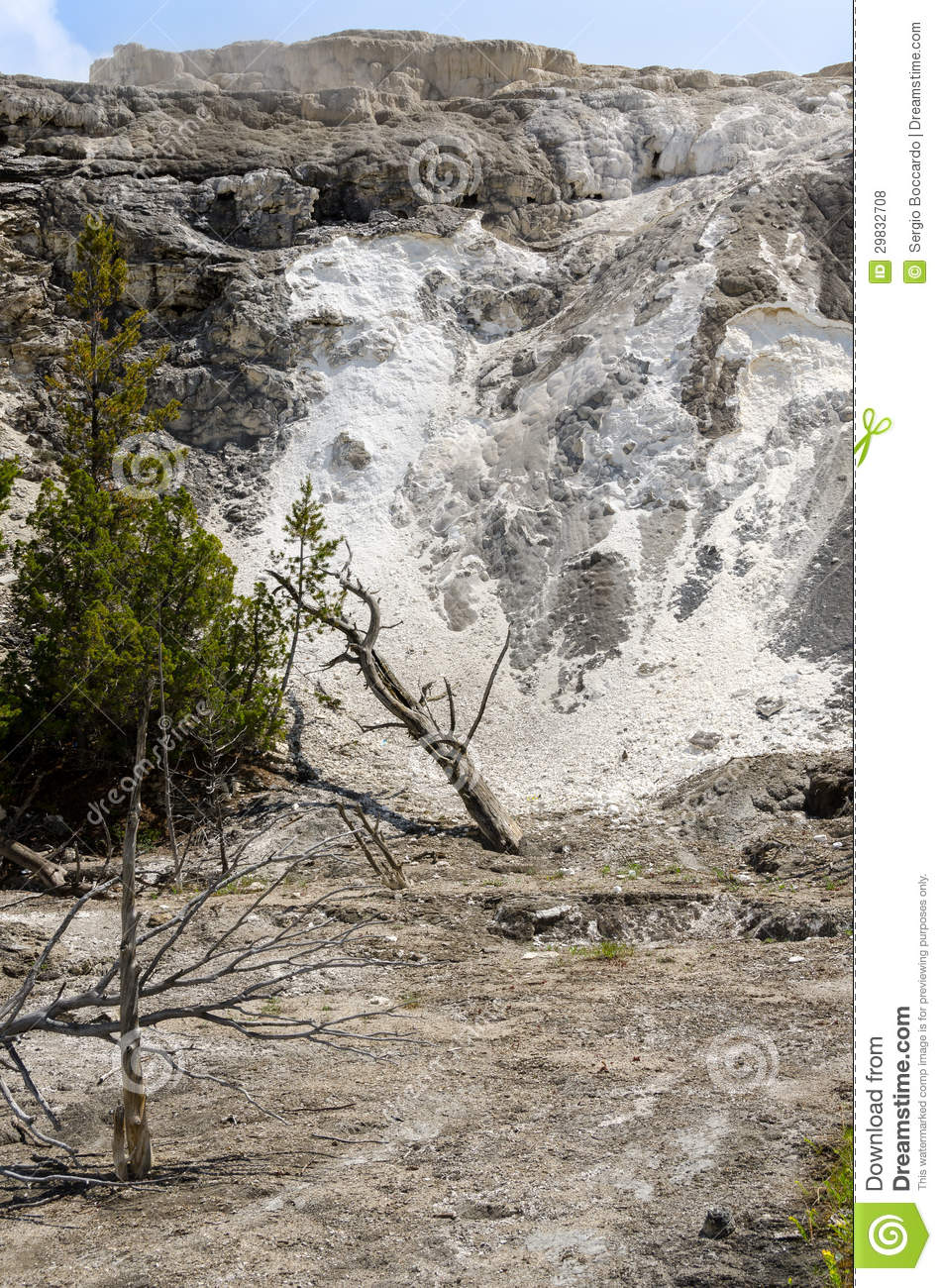 Mammoth Hot Springs In Yellowstone Stock Photo - Image ...