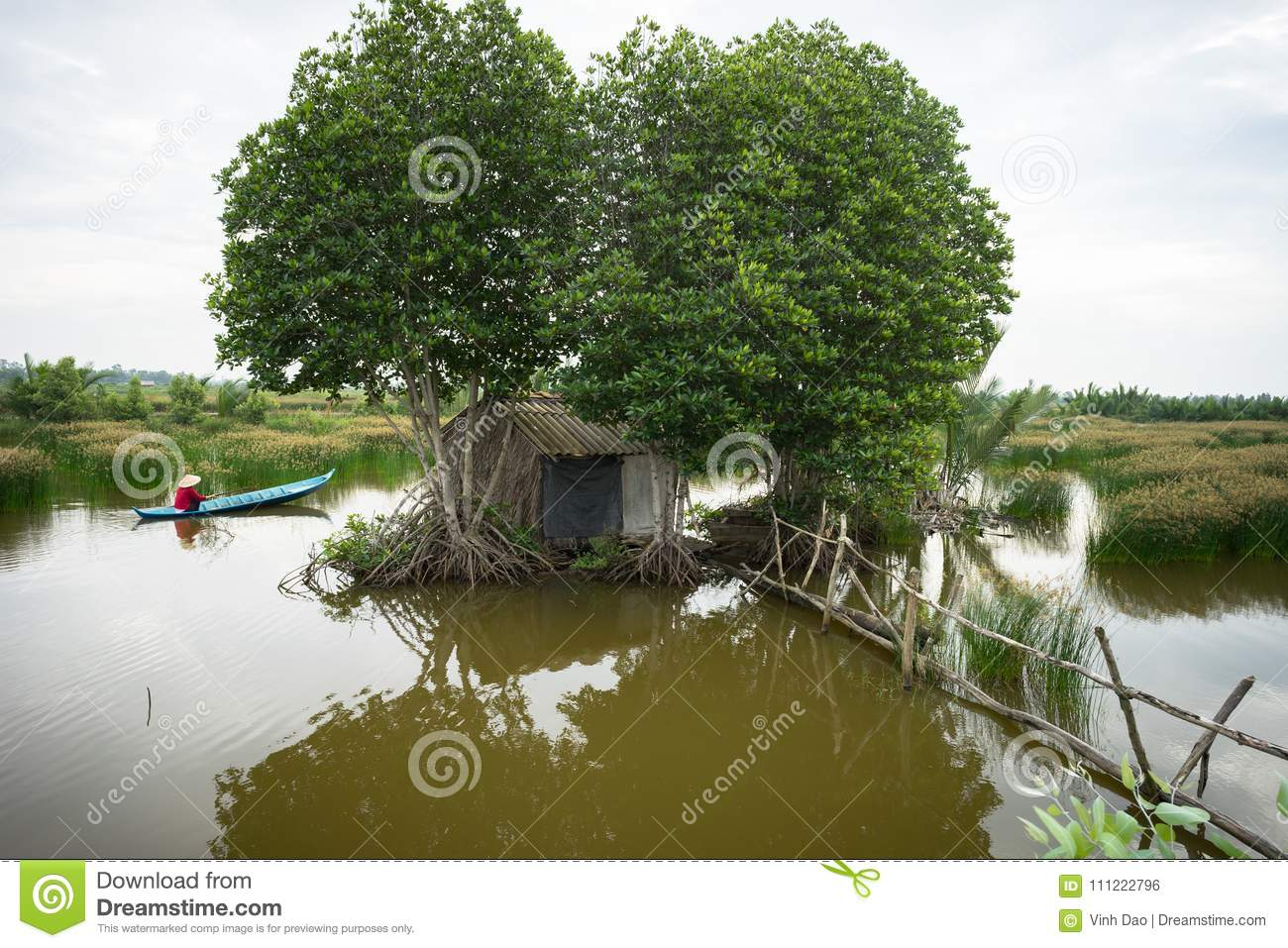 Landscape of Mekong delta with mangrove tree, floating house and rowing boat in Ca Mau province, Mekong delta, south of Vietnam