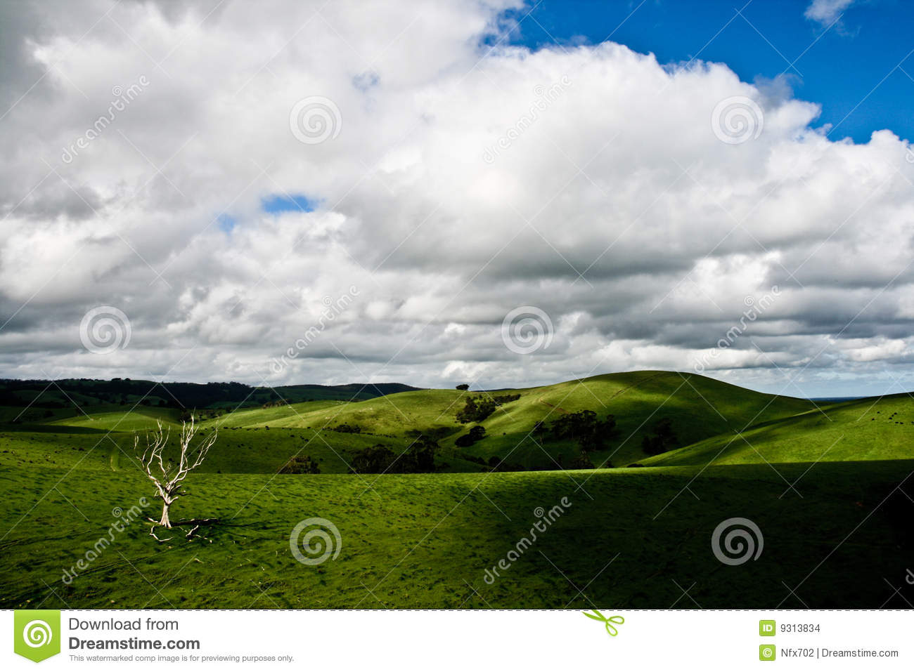 Landscape near adelaide stock images image 9313834 for Landscape design adelaide hills