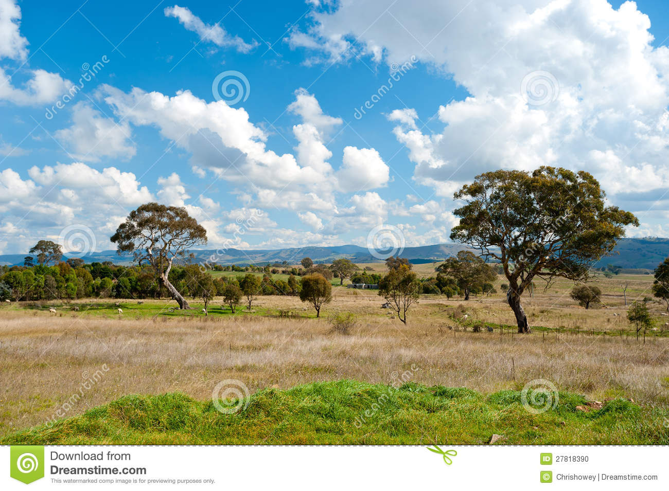 Landscape north of canberra australia stock photo image for Landscape design canberra