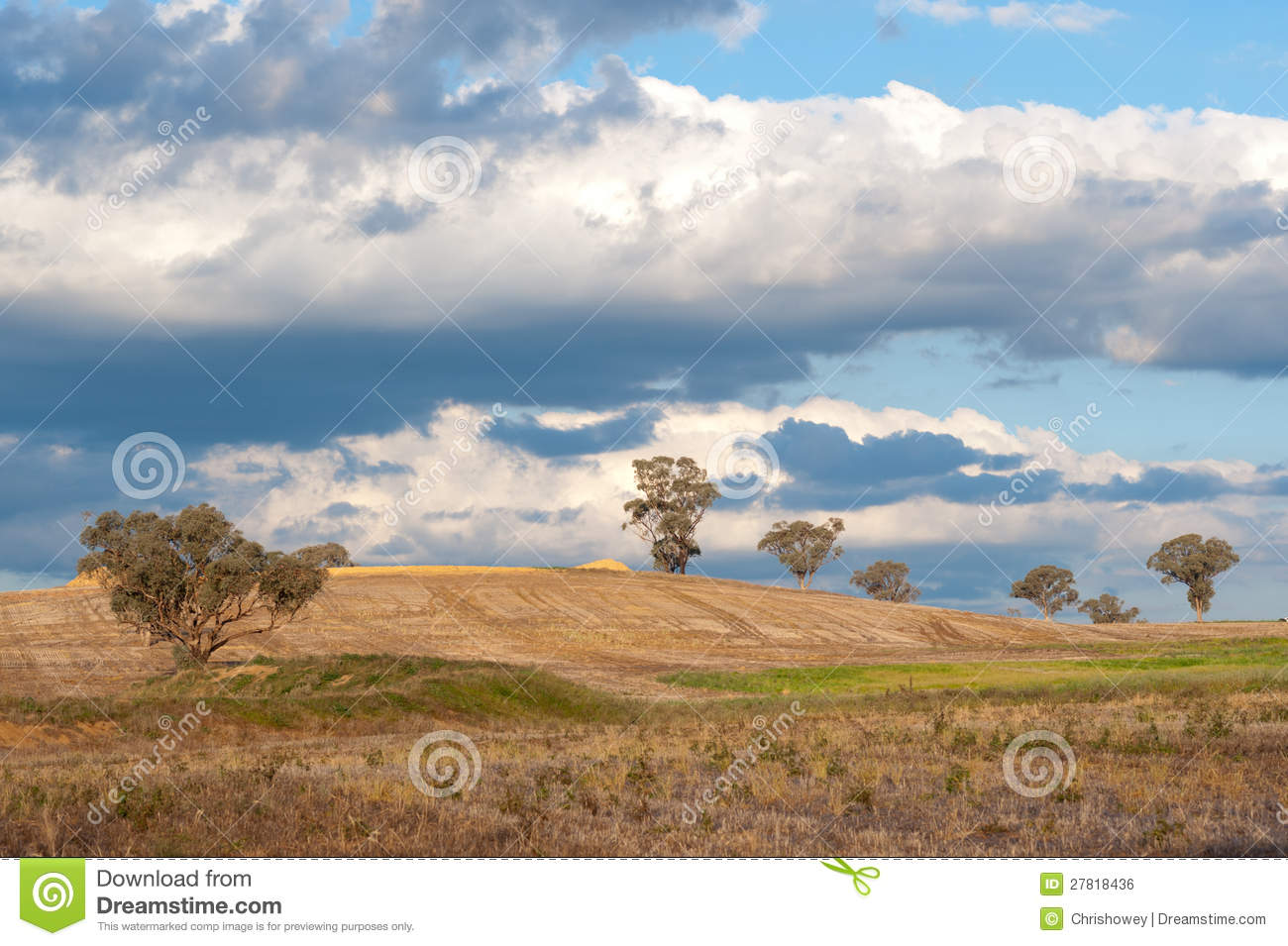 Landscape north of canberra australia royalty free stock for Landscape design canberra