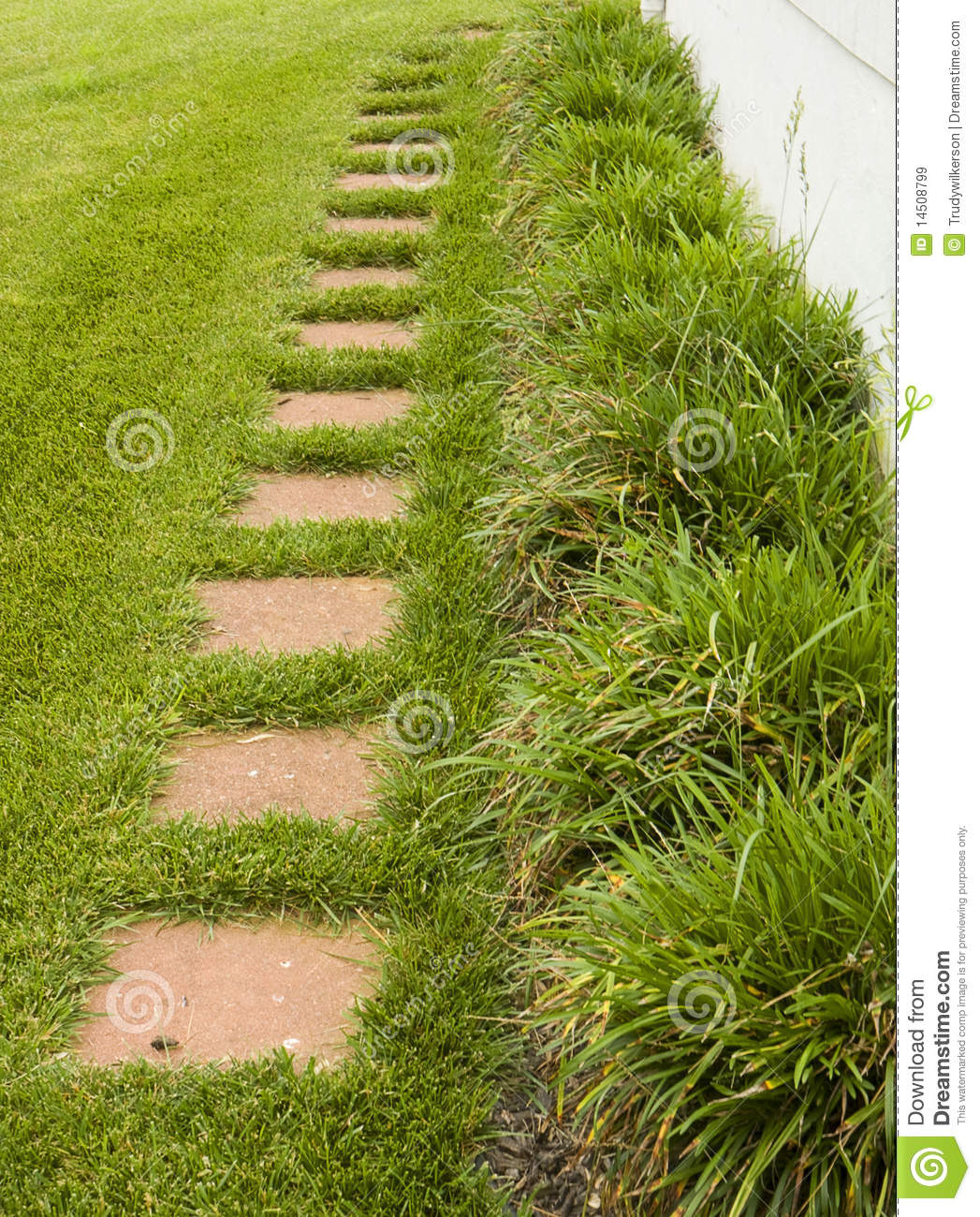 landscape pathway royalty free stock images image 14508799
