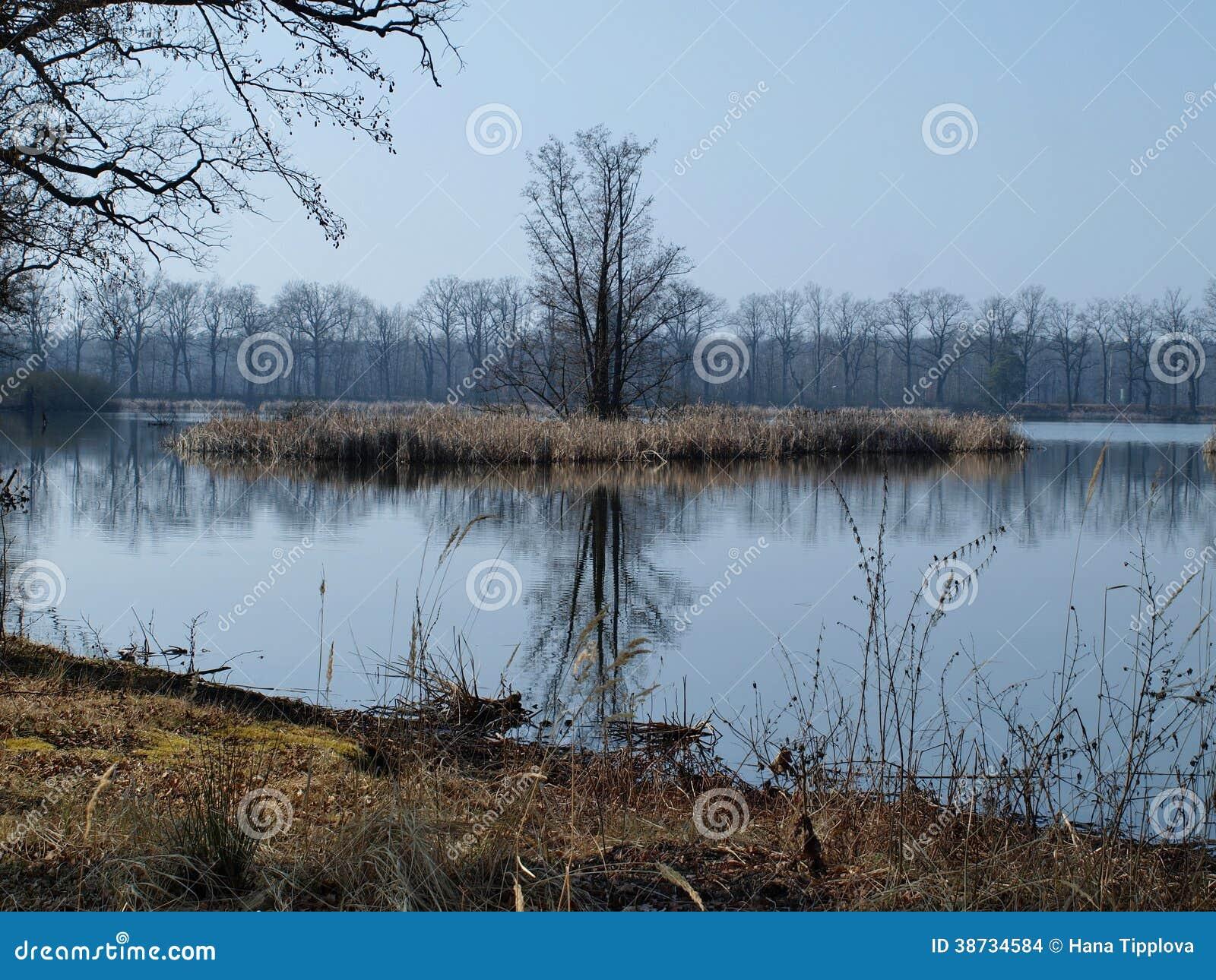 Landscape ponds, South Bohemia