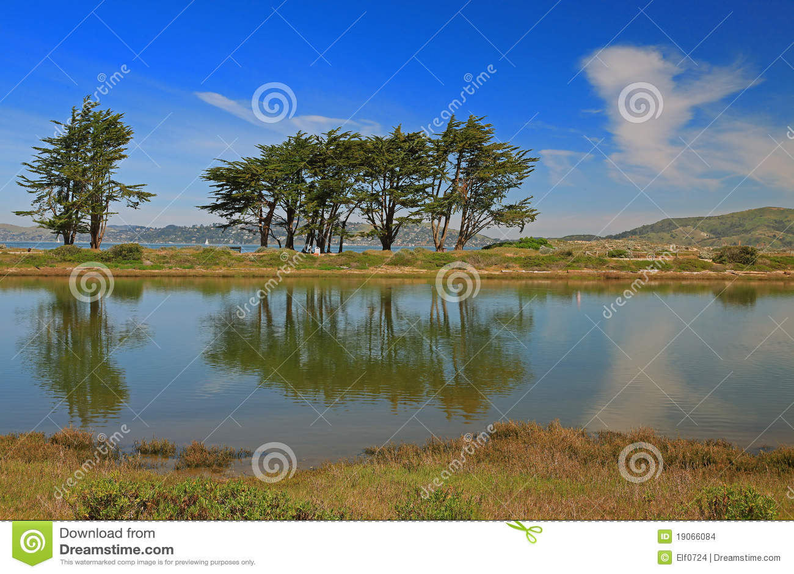 Landscape in san francisco california stock images for San francisco landscape