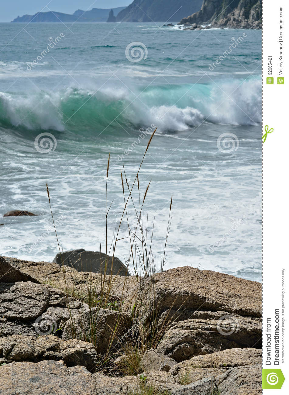 Landscape on sea 9 stock image image of horizon beauty for Seagrass landscaping