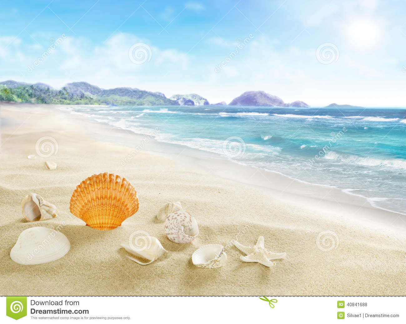 Landscape With Shells On Sandy Beach. Stock Photo - Image: 40841688