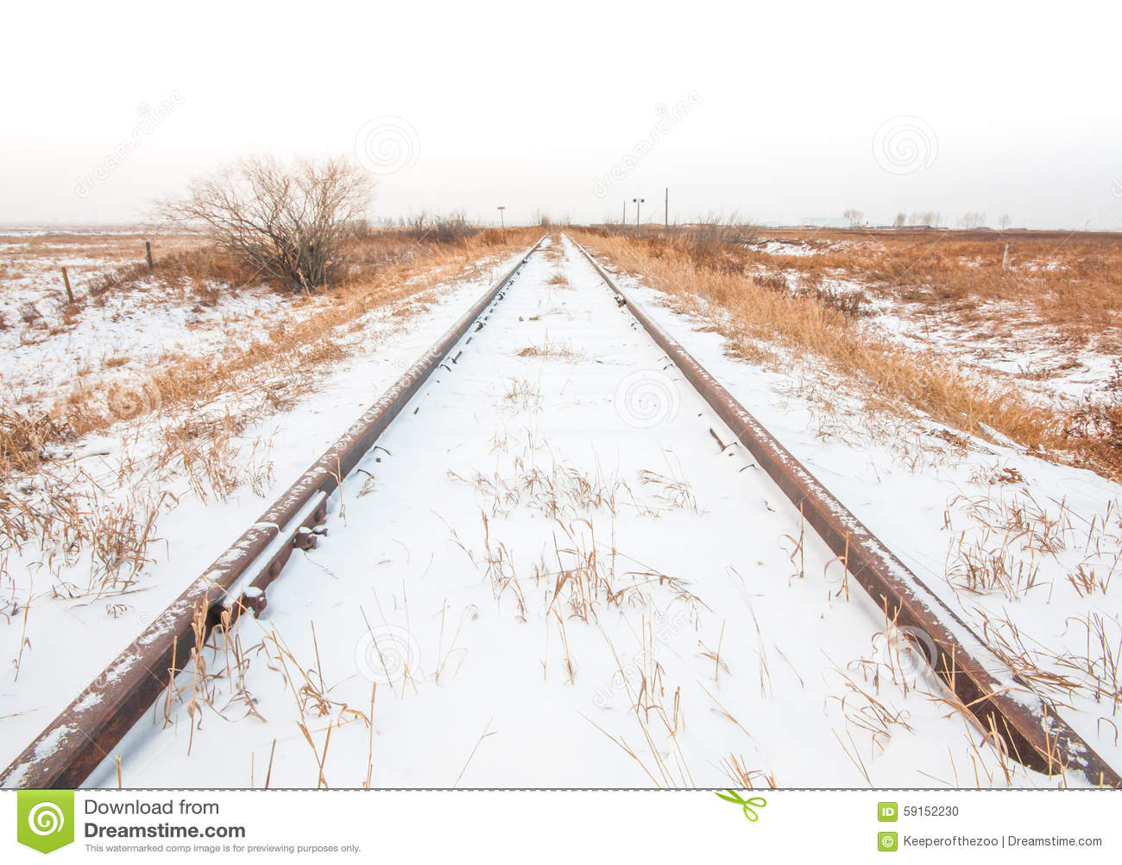Landscape of Snowy Train Tracks