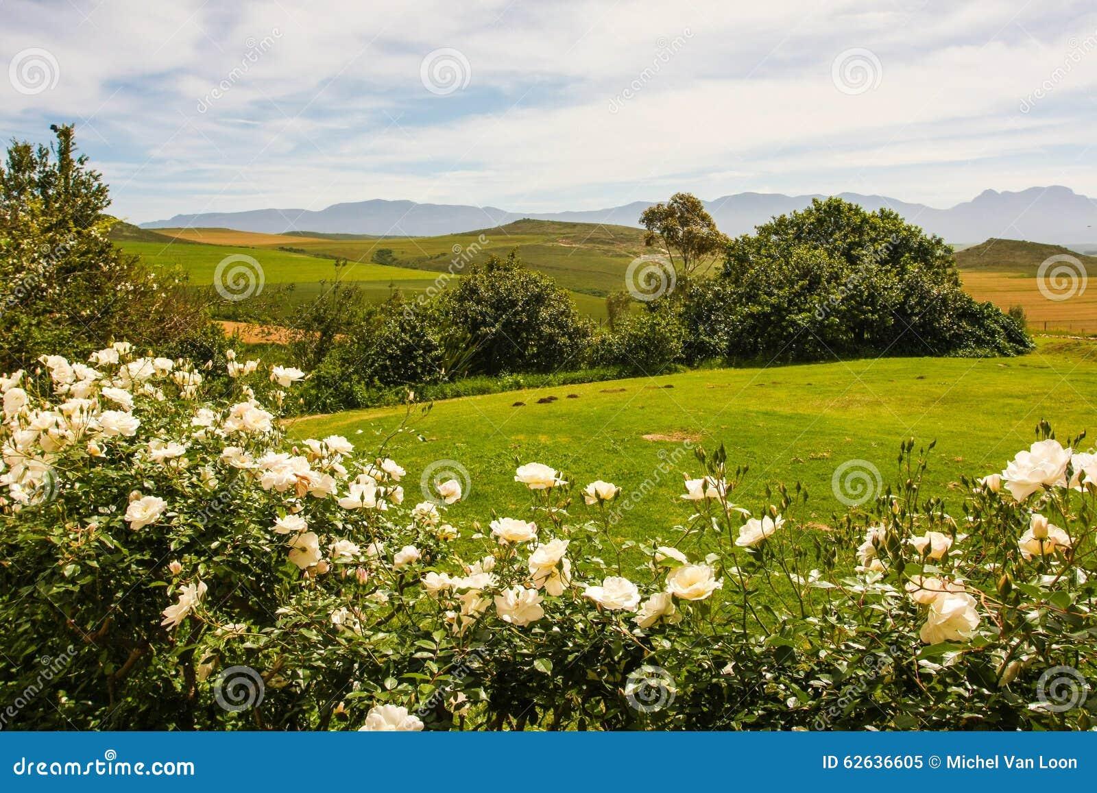 Landscape south africa stock photo image 62636605 for Landscape sa