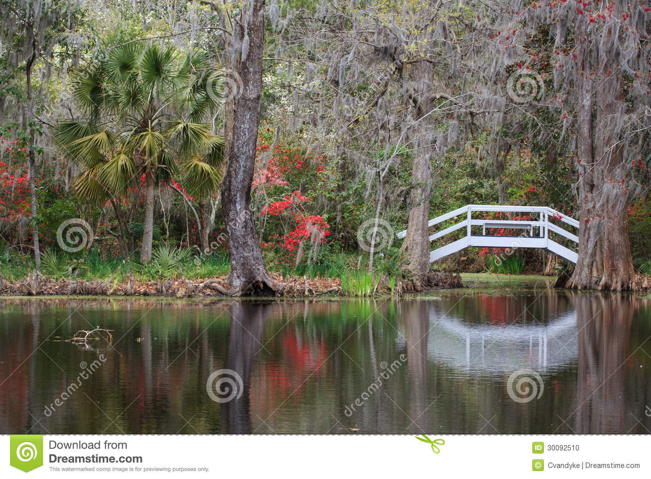 Charleston south carolina sc garden bridge pond stock for Landscaping plants south carolina