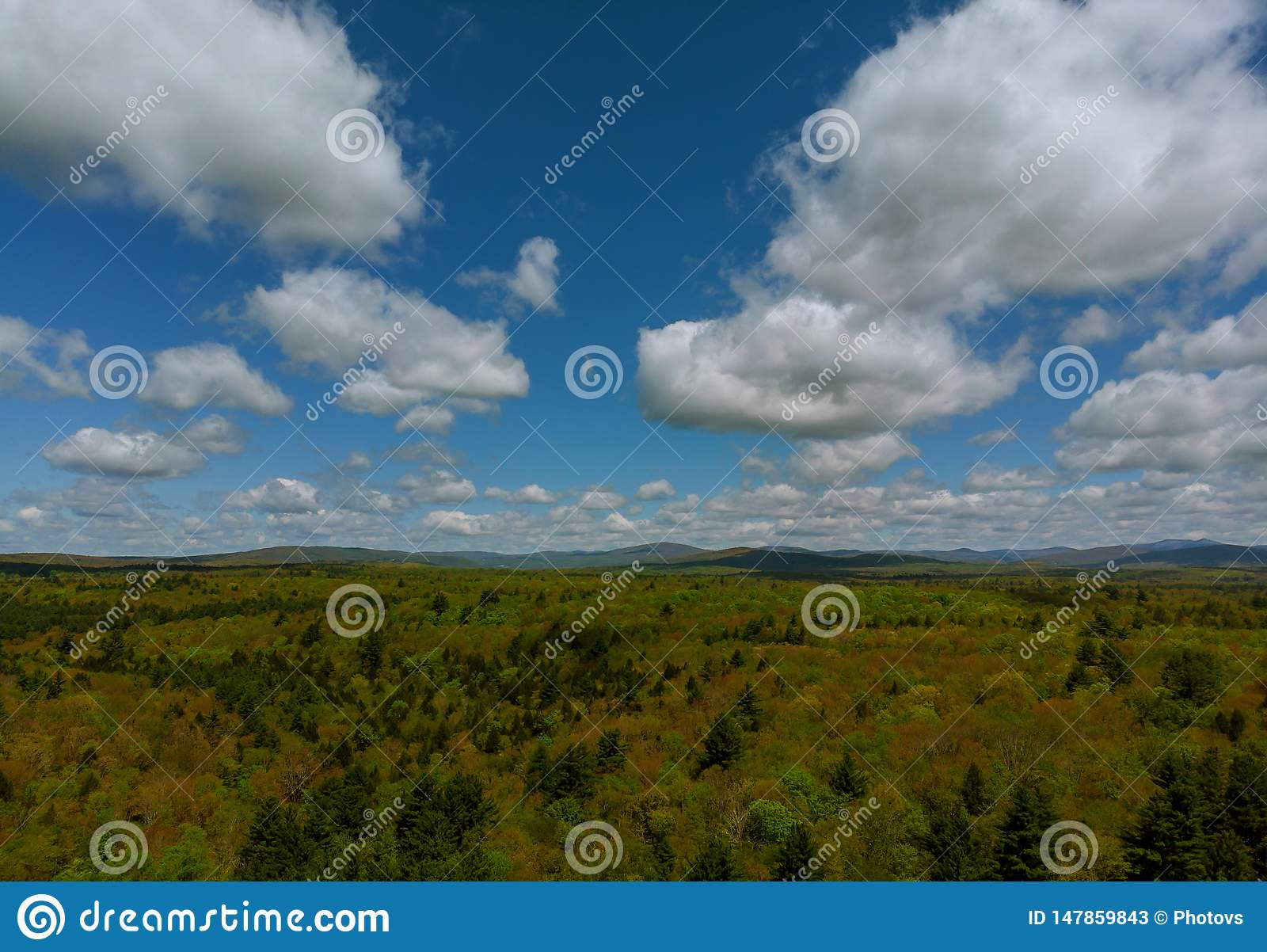 Pocono mountains summer green grass and blue sky landscape