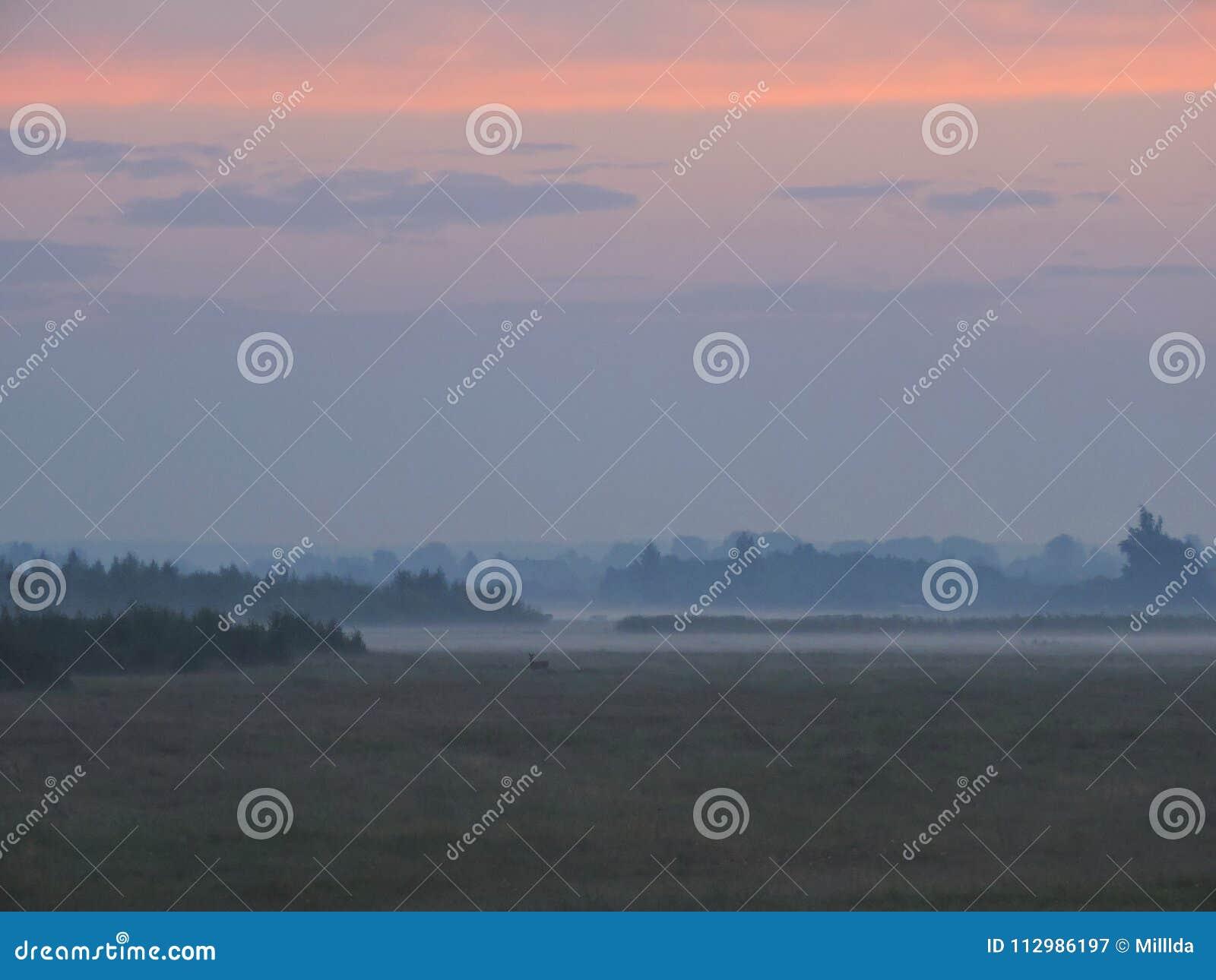 Landscape in sunrise colors, Lithuania