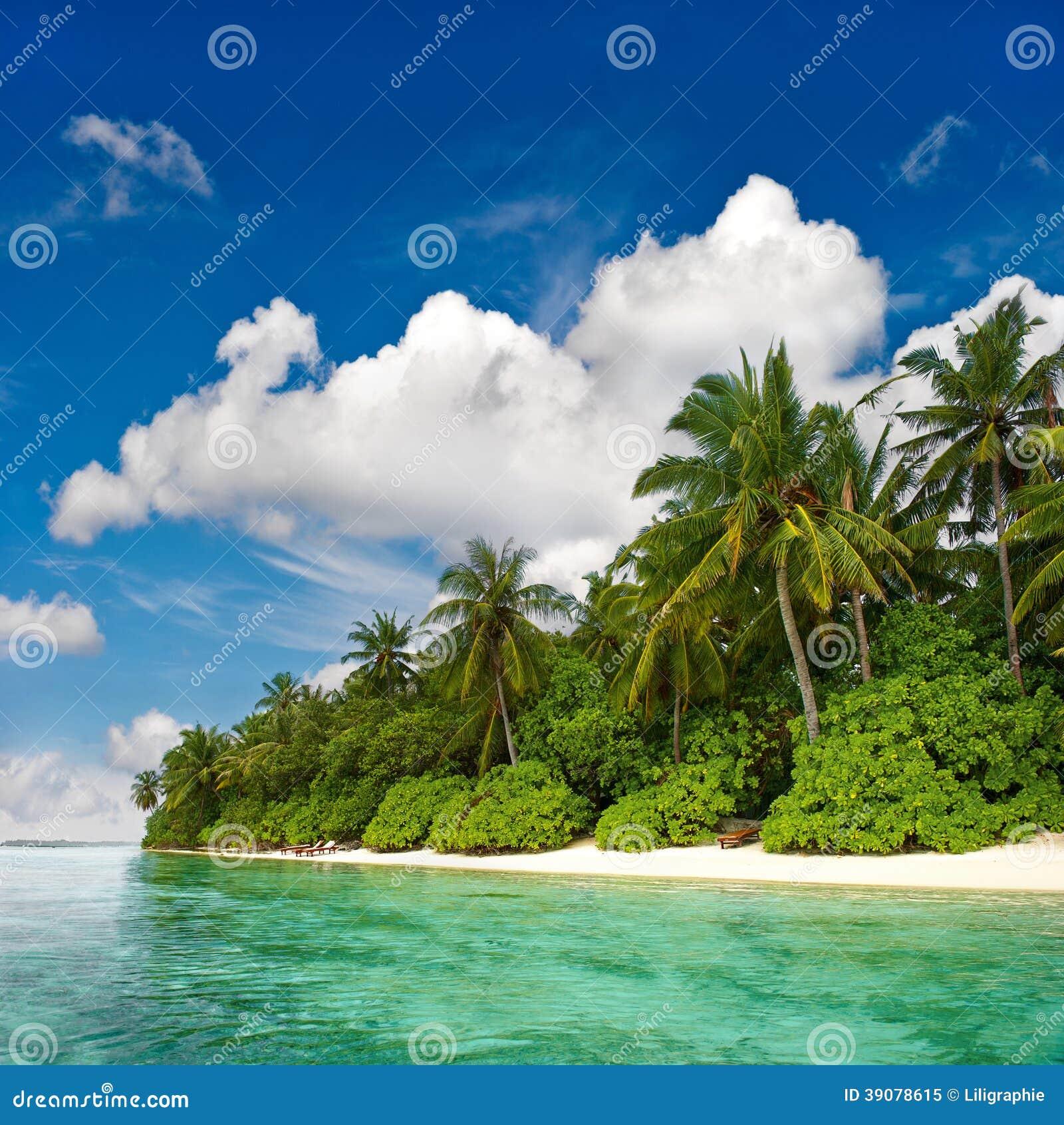 Tropical Beaches: Landscape Of Tropical Island Beach Stock Image