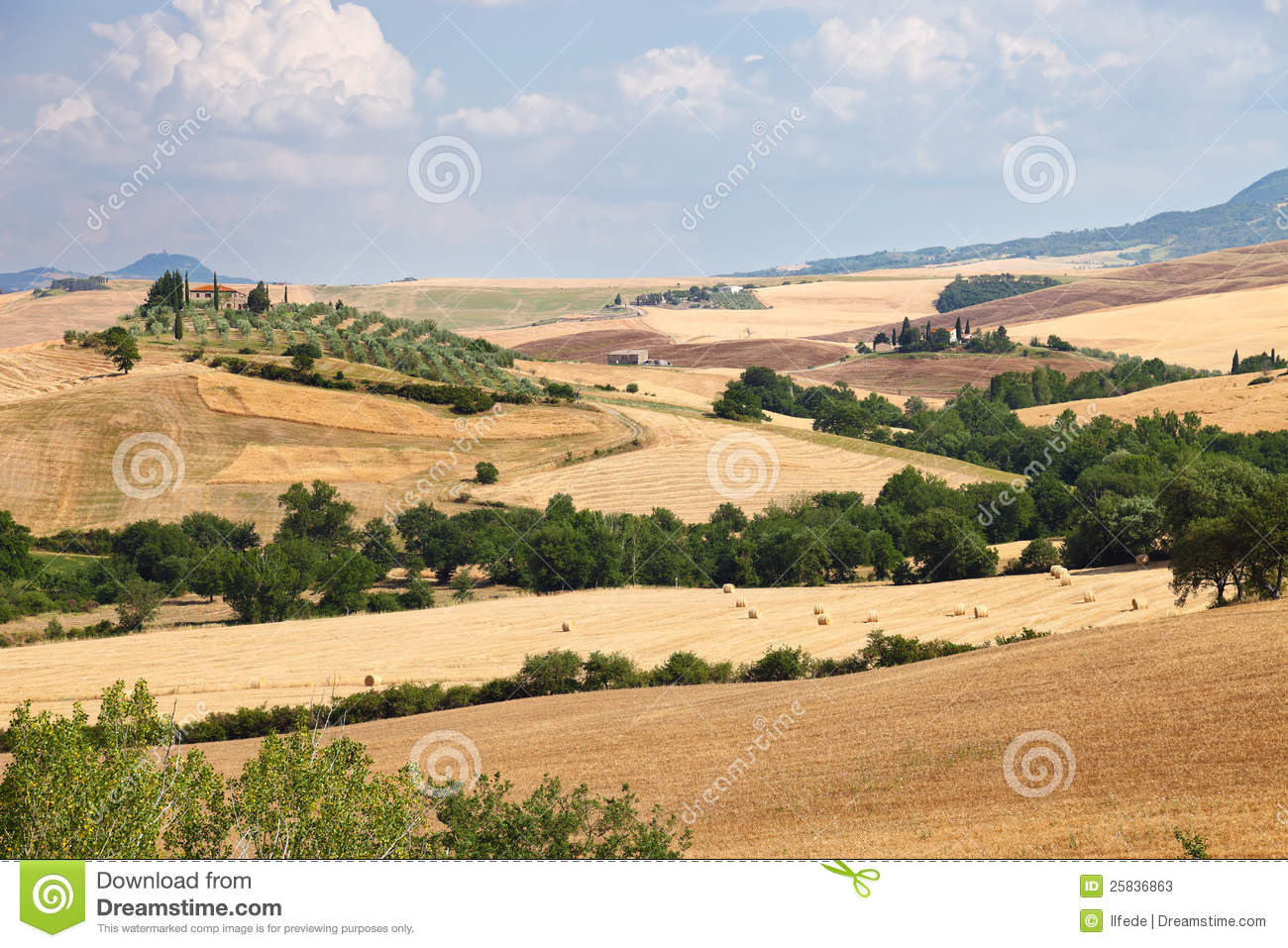 Landscape of tuscany near siena in italy stock photos for Nearby landscapers