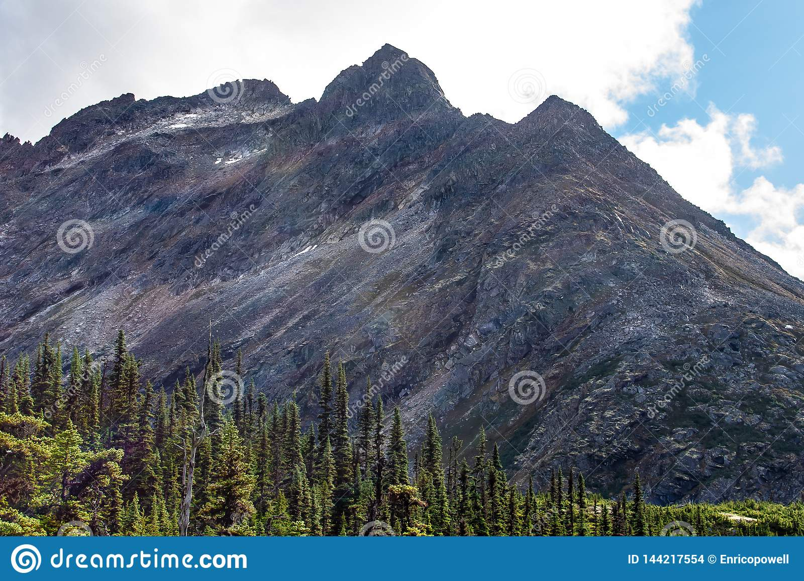 Landscape view of alpine trees and a huge rocky mountain