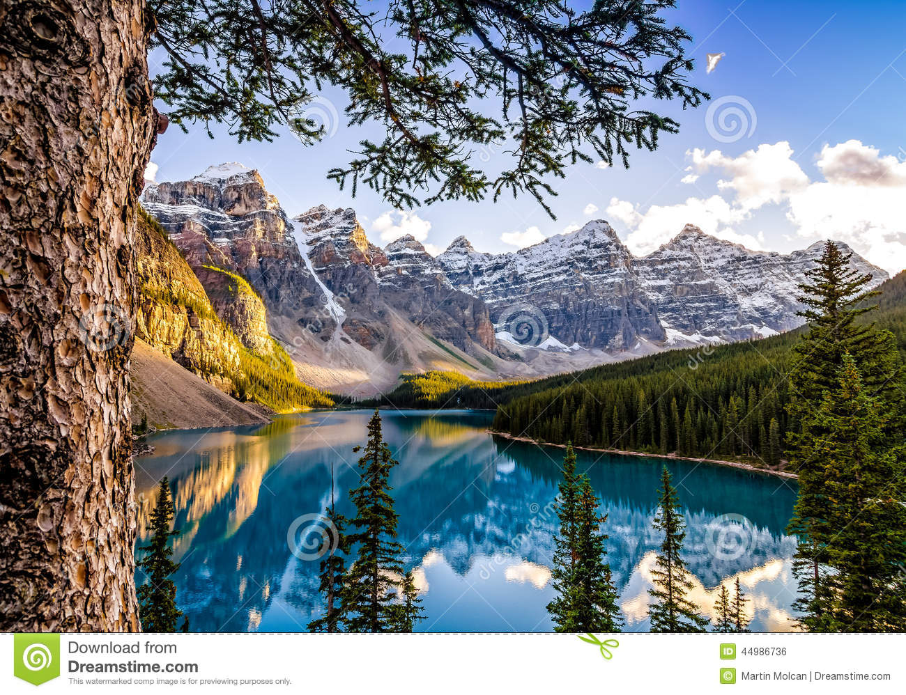 Image gallery mountain view alberta canada for Nearby landscapers