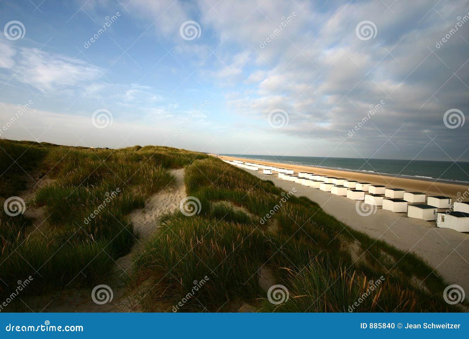 Landscape01 duński