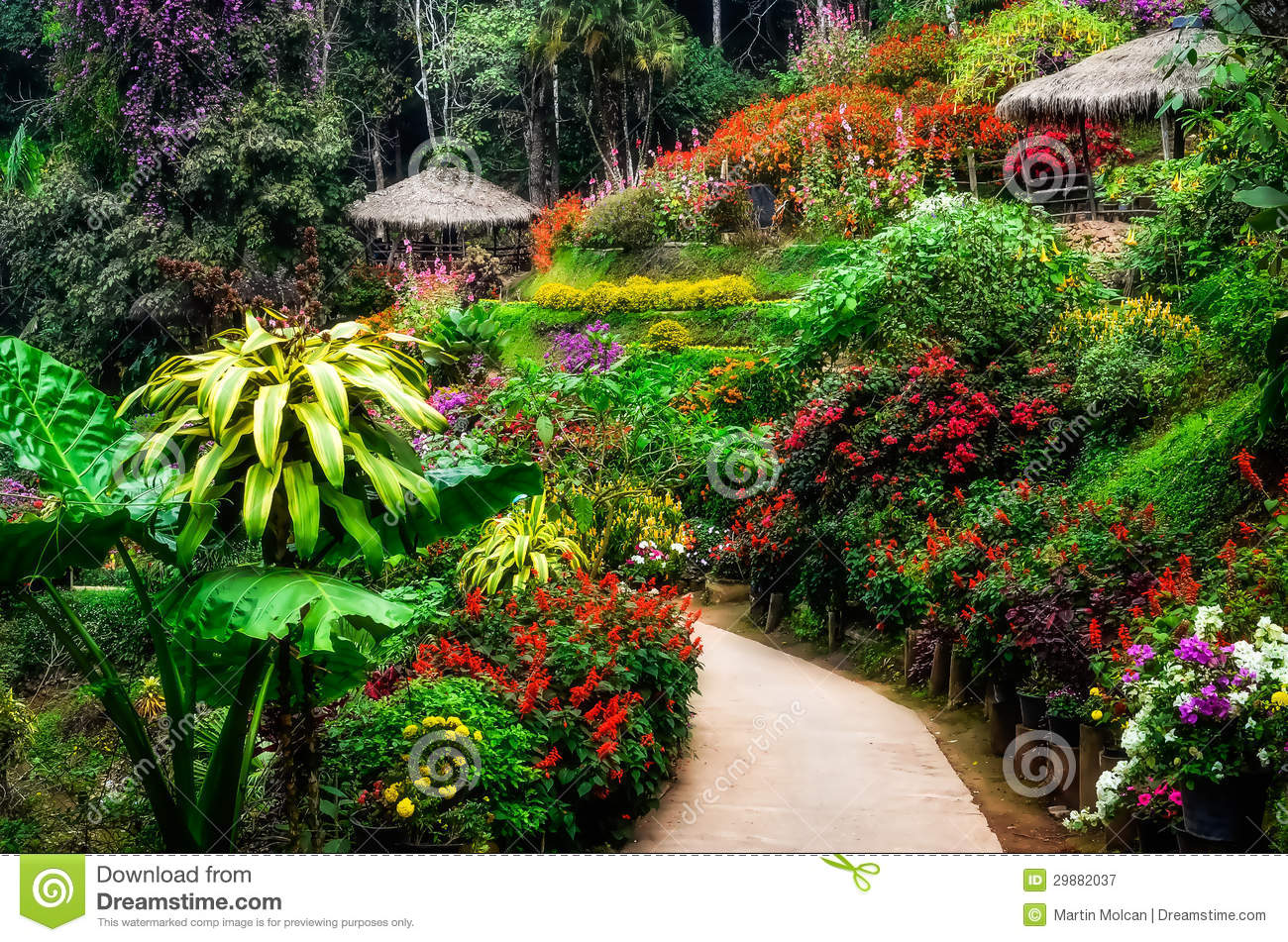 Landscaped Colorful And Peaceful Flower Garden In Blossom