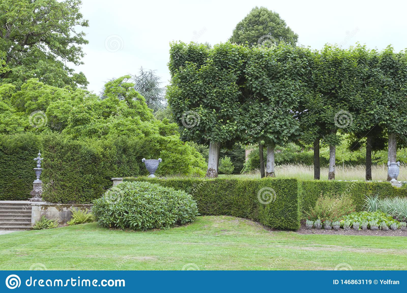 Elegant Landscaped Garden With Hedge Topiary Trees Stock Image Image Of Landscaped English 146863119