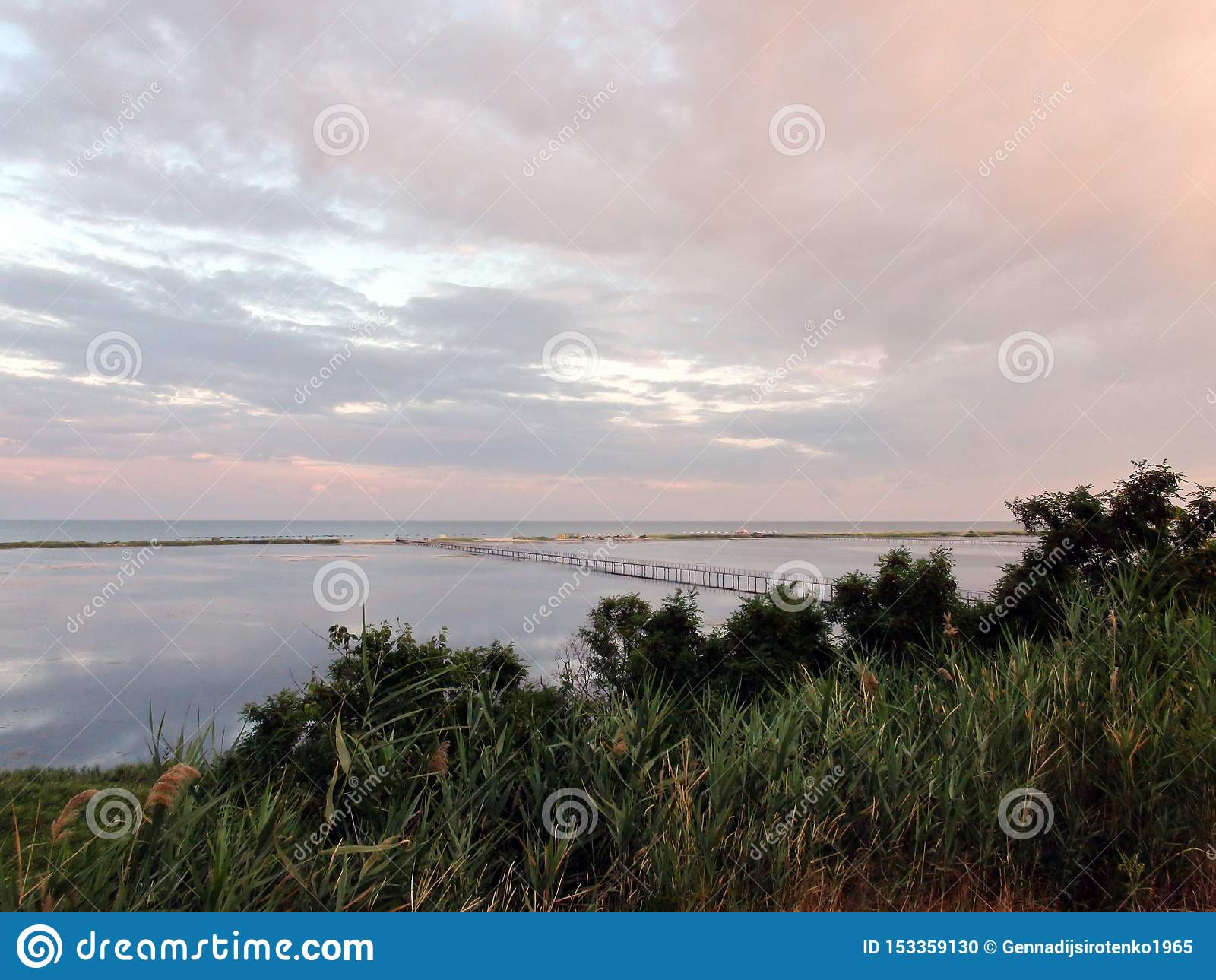 Landscapes of the flora of the Azov Sea and sea evening landscapes near the town of Primorsk of the Zaporizhzhya region. Ukraine.