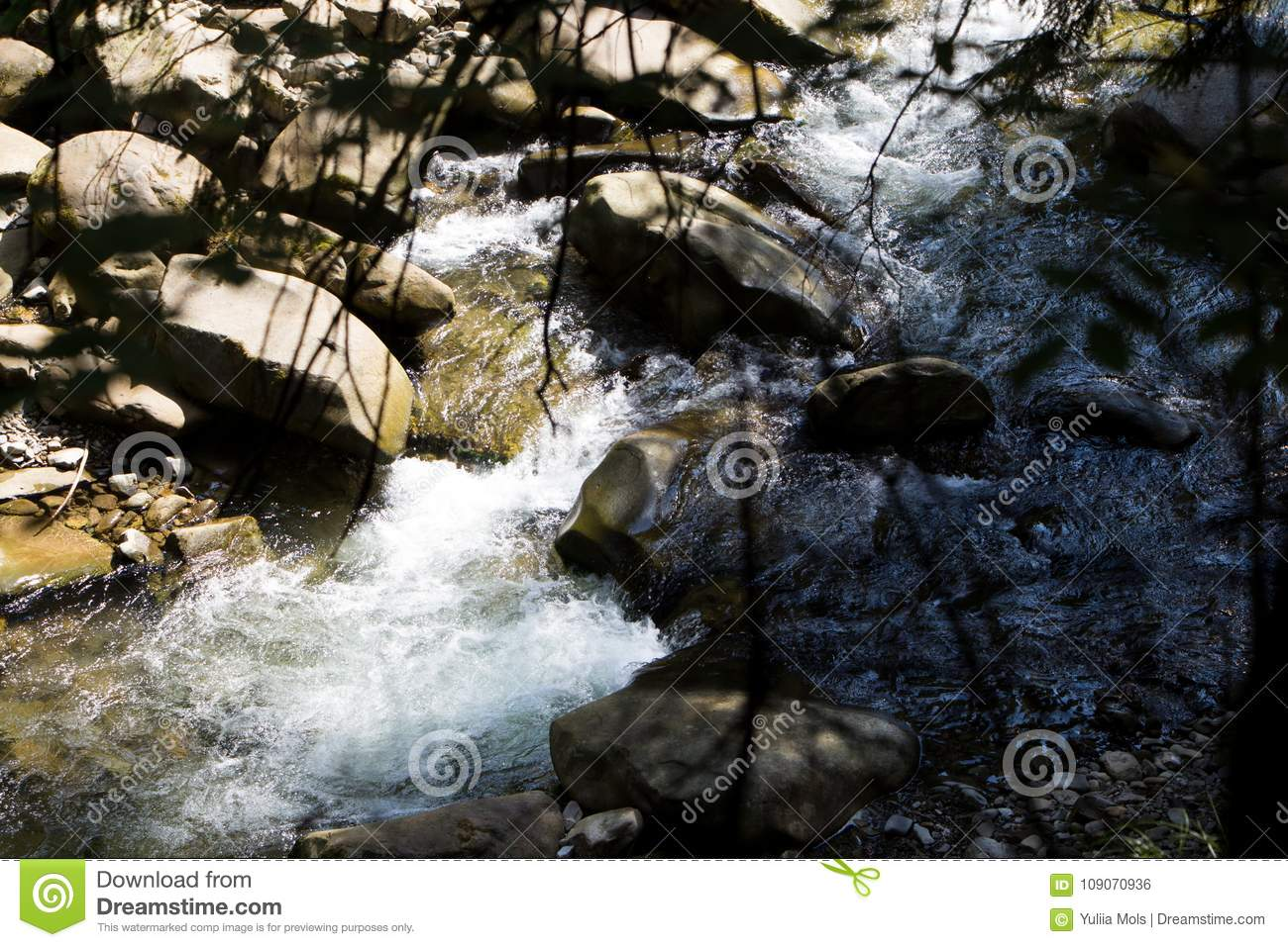 Mountain River And Natural Green Forest. Stock Photo