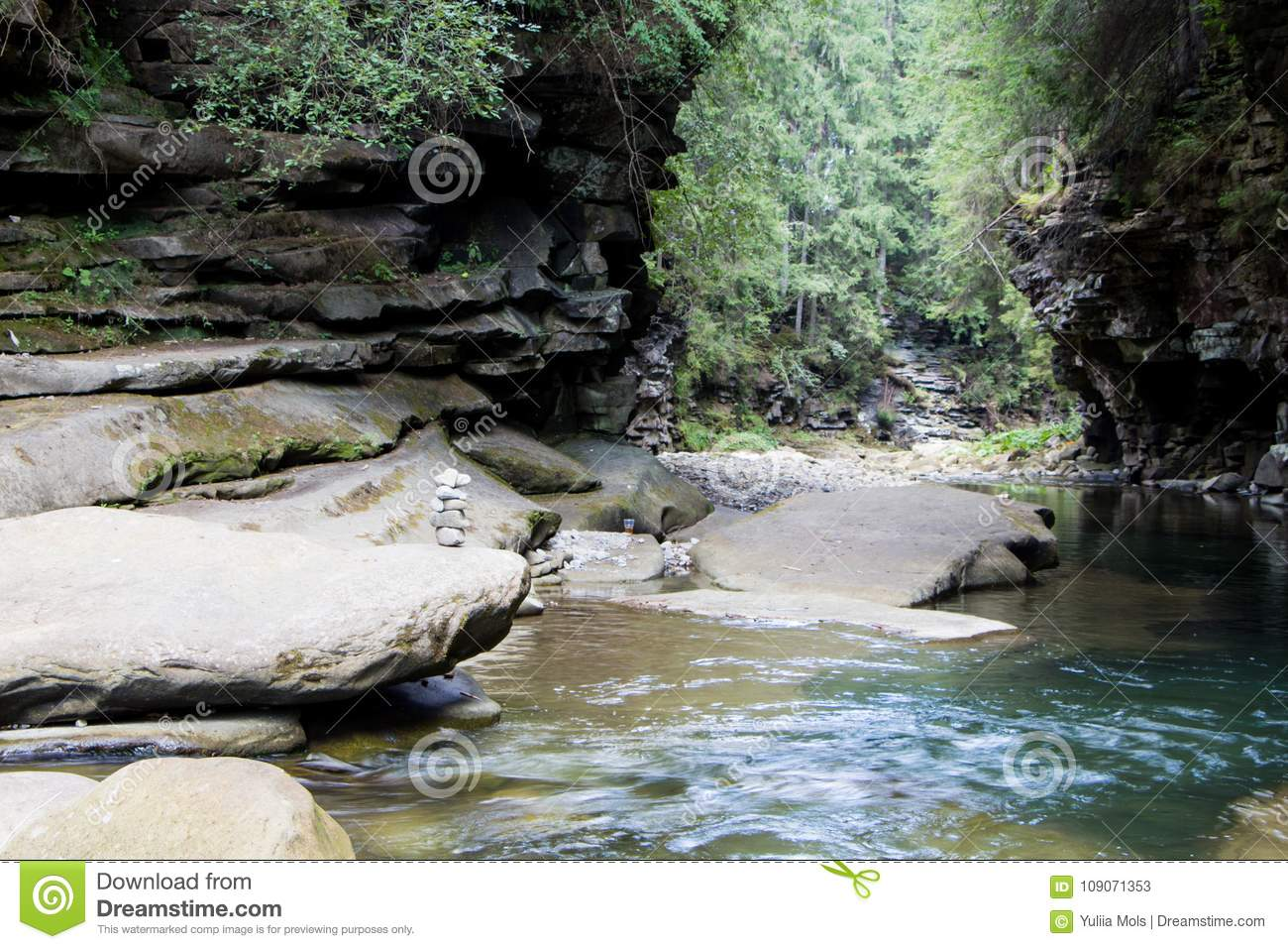 Mountain River And Natural Green Forest. Stock Image