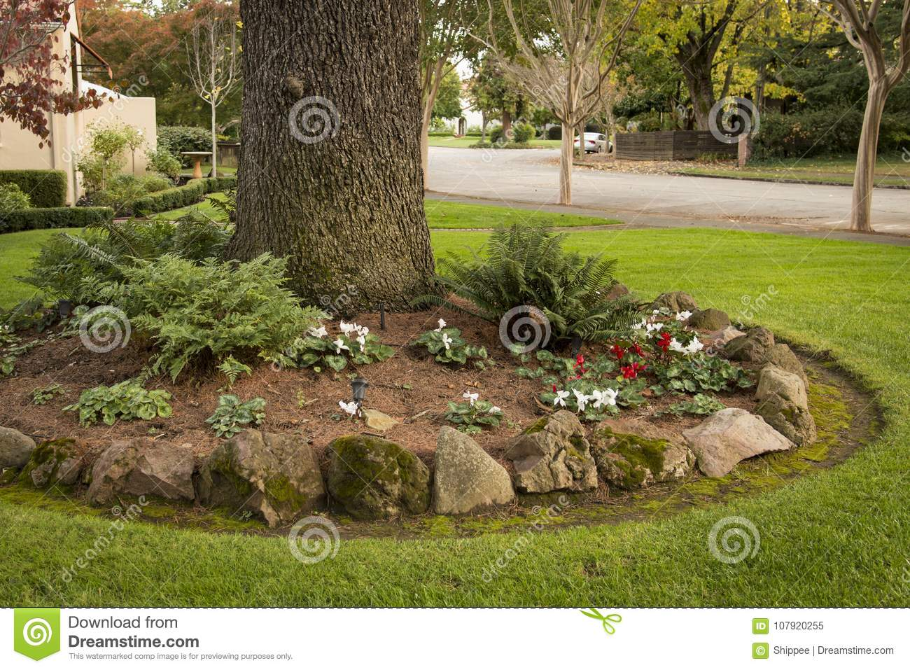Front Yard Landscaping Idea Stock Image Image Of Plant