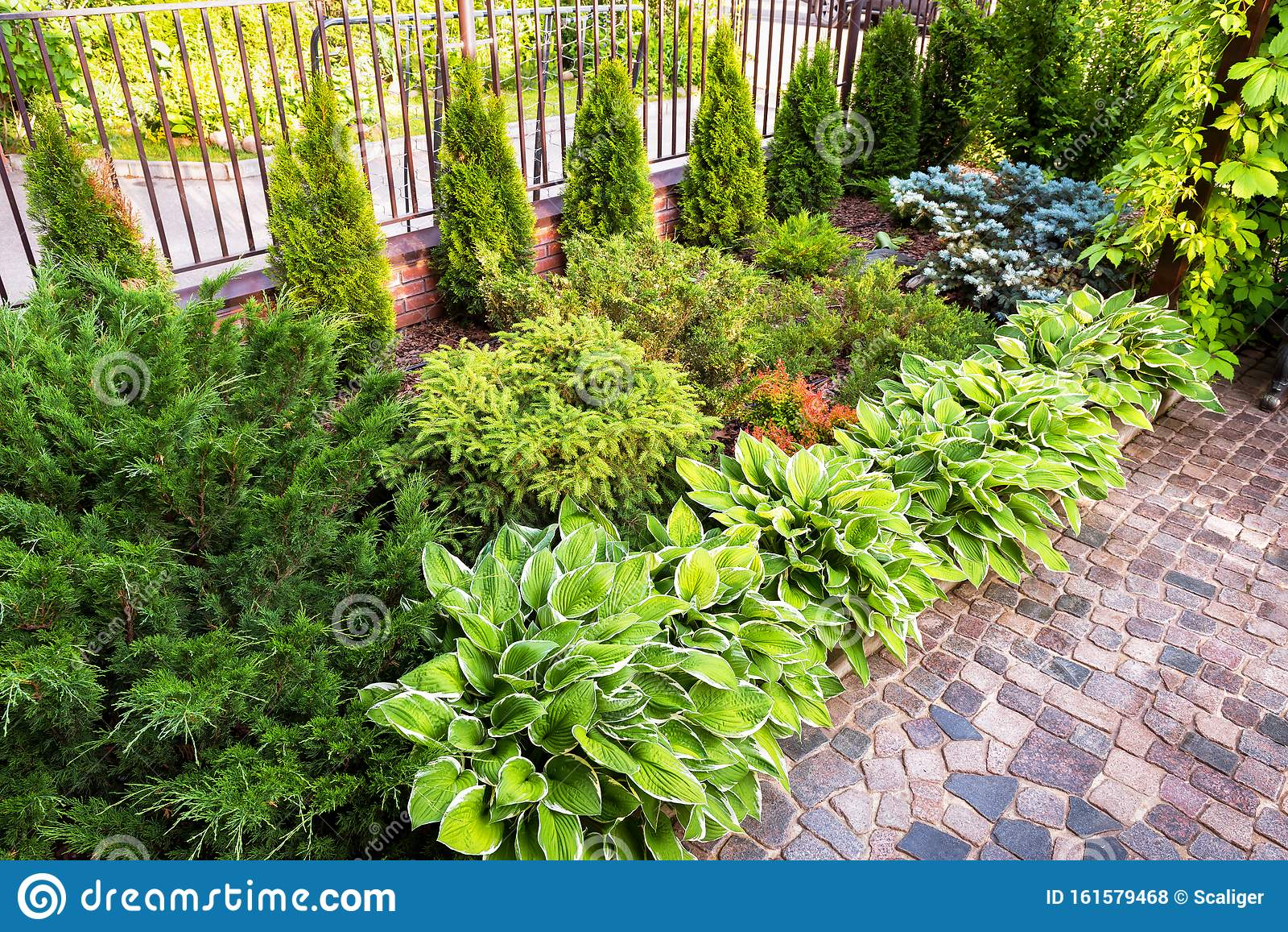 Landscaping In Home Garden Beautiful Natural Landscape Design With Flower Beds In Summer Stock Photo Image Of Garden Landscaping 161579468
