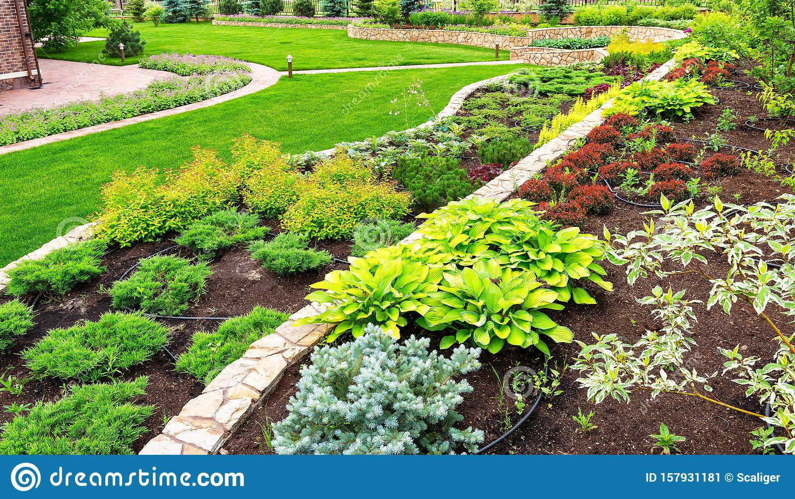 Landscaping Panorama Of Home Garden Stock Image Image Of