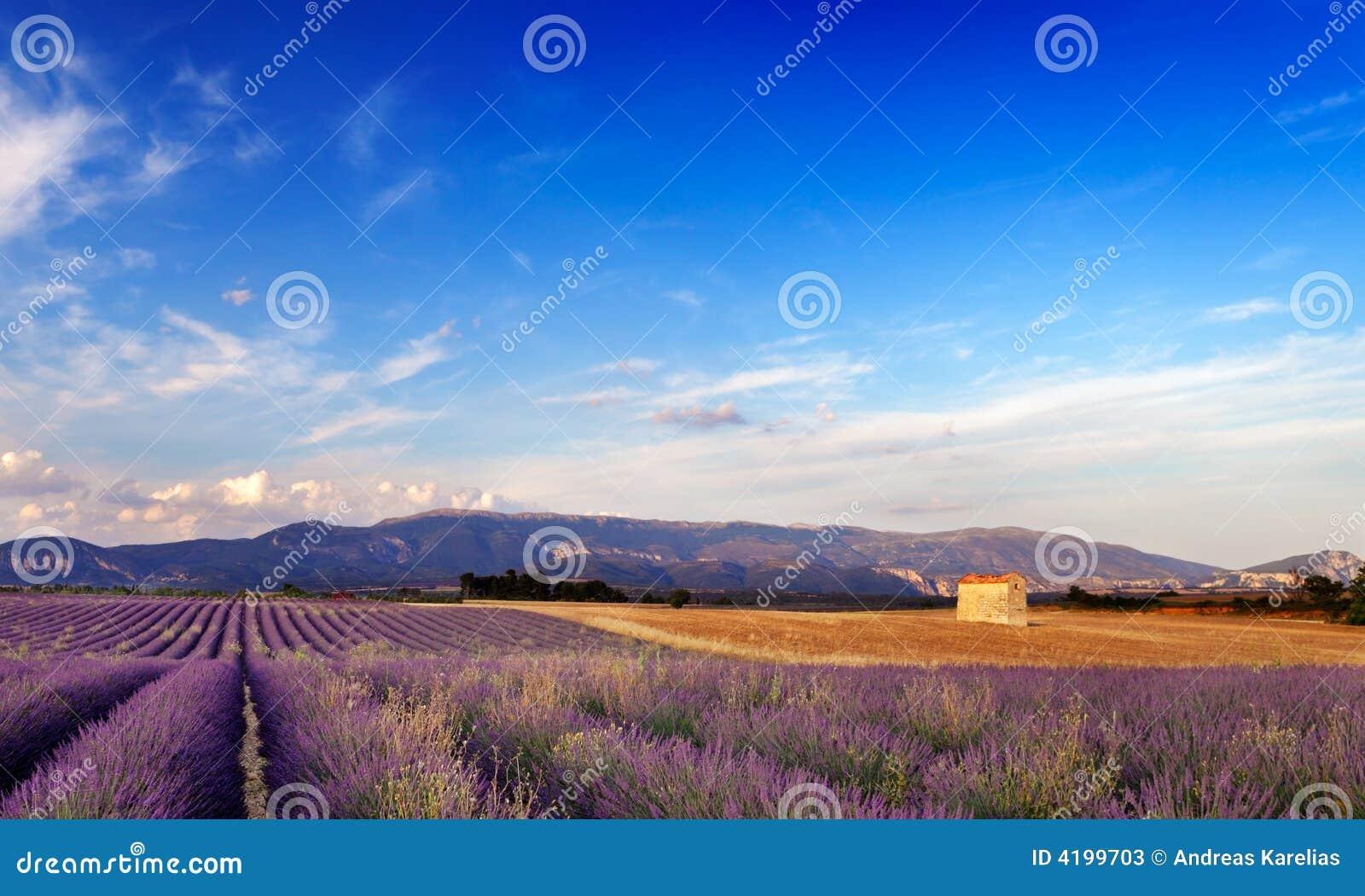 Landschaft in Provence, Frankreich