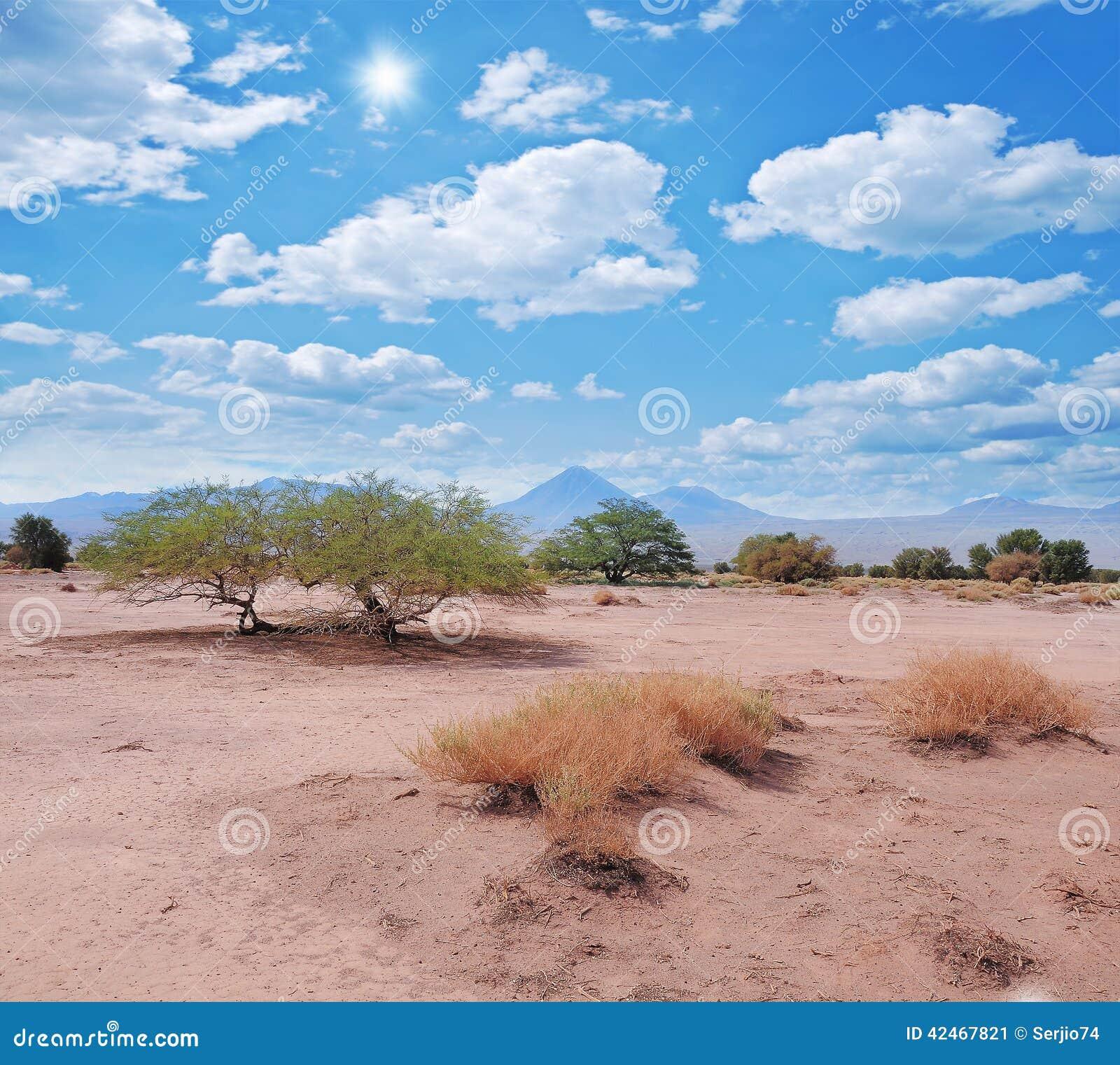 Landschaft von Atacama-Wüste