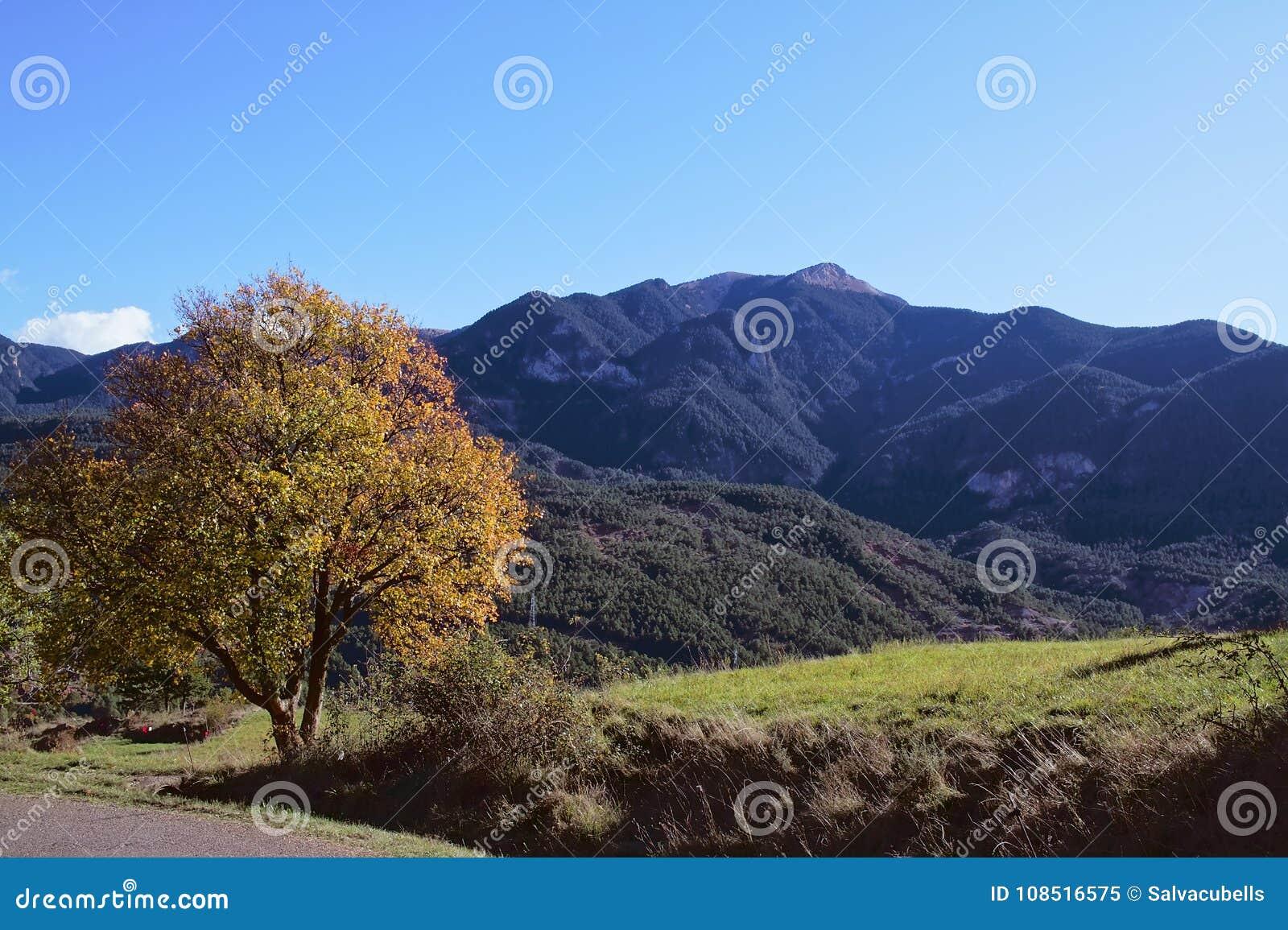 Landschaft von Bergen und von Wiesen im Herbst