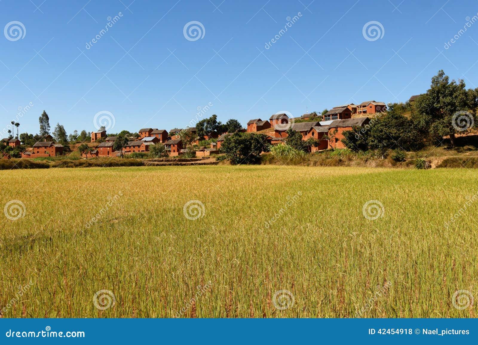 Landschaft von Madagaskar
