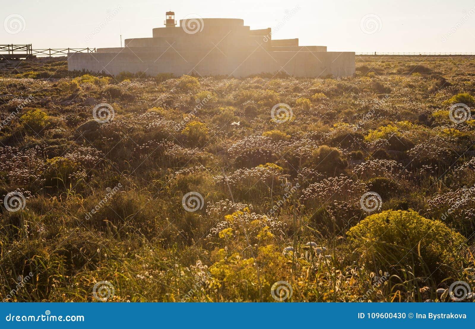 Landschaft von Süd-Portugal, Algarve Region