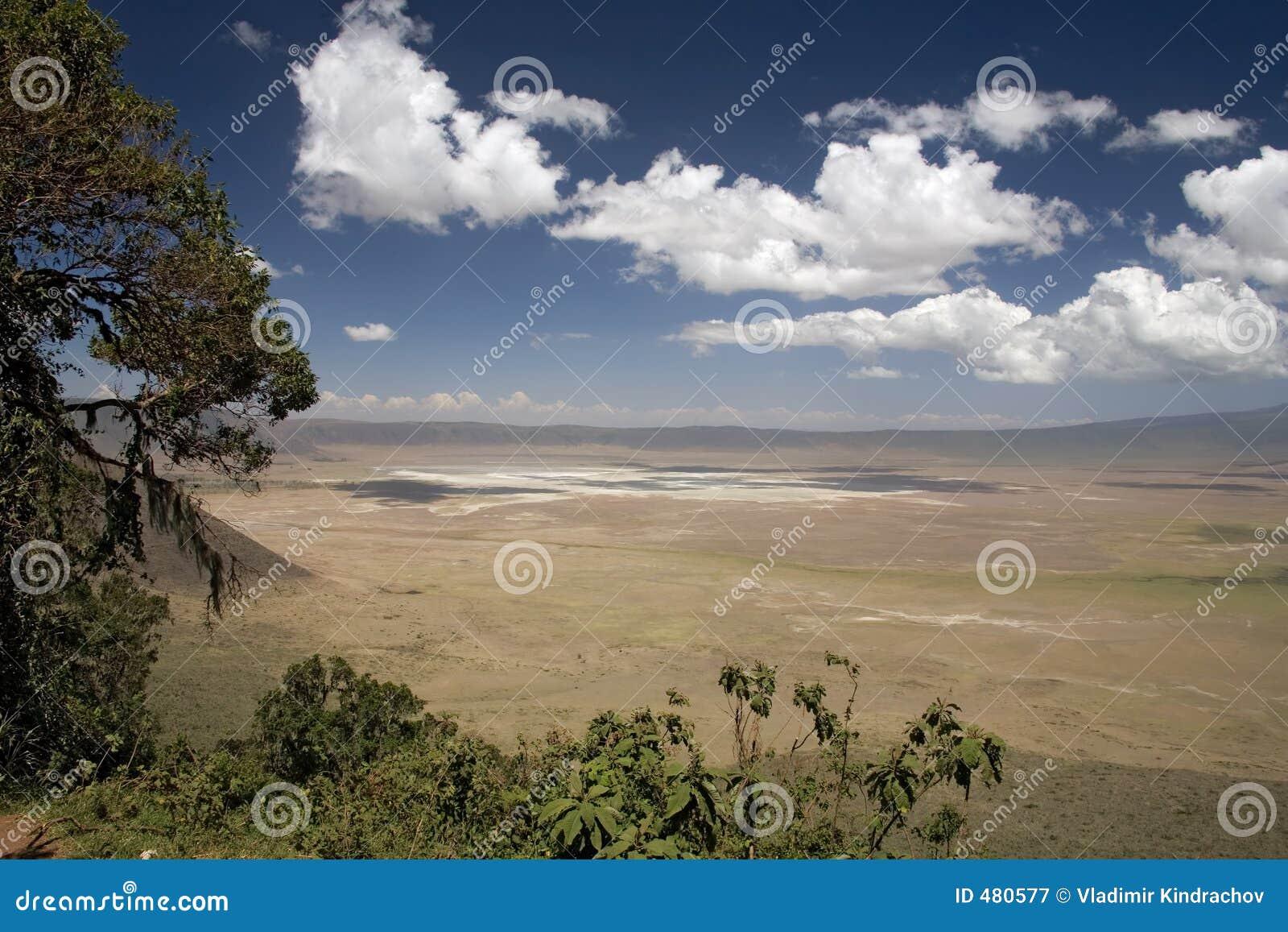 Landschap 010 van Afrika ngorongoro