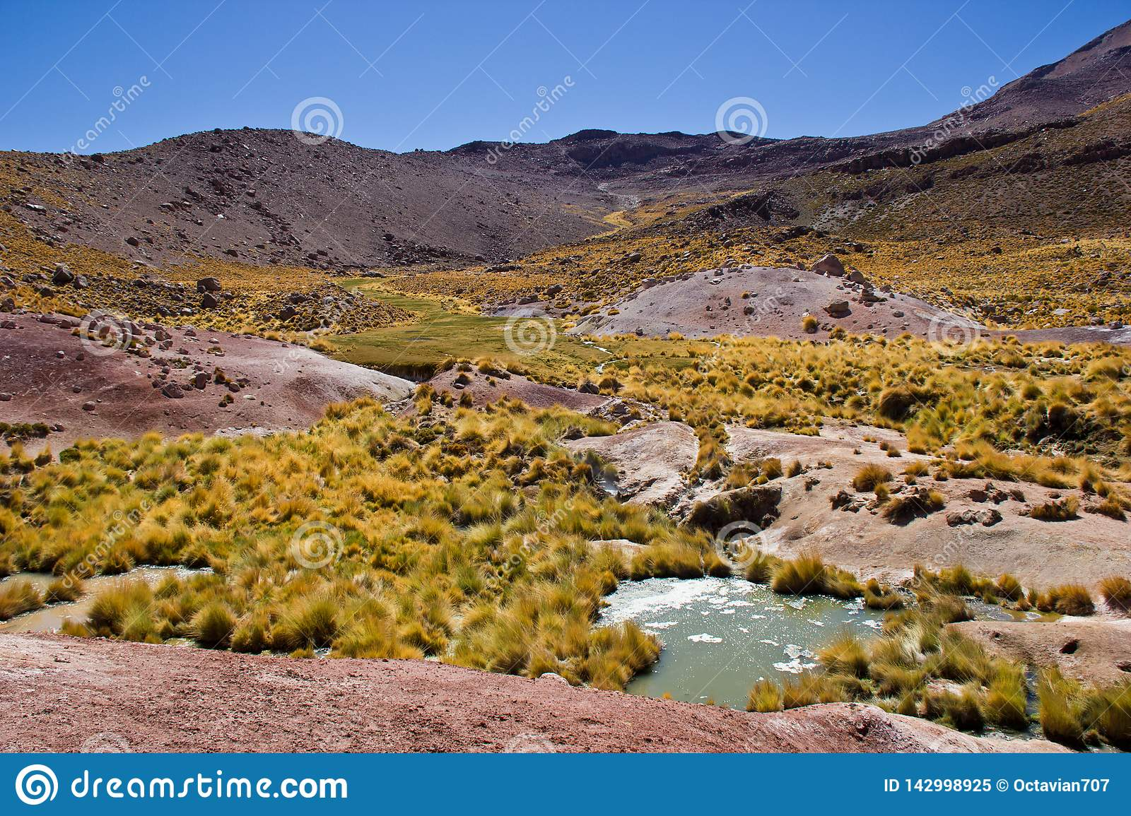 Landschap in Chili/Atacama