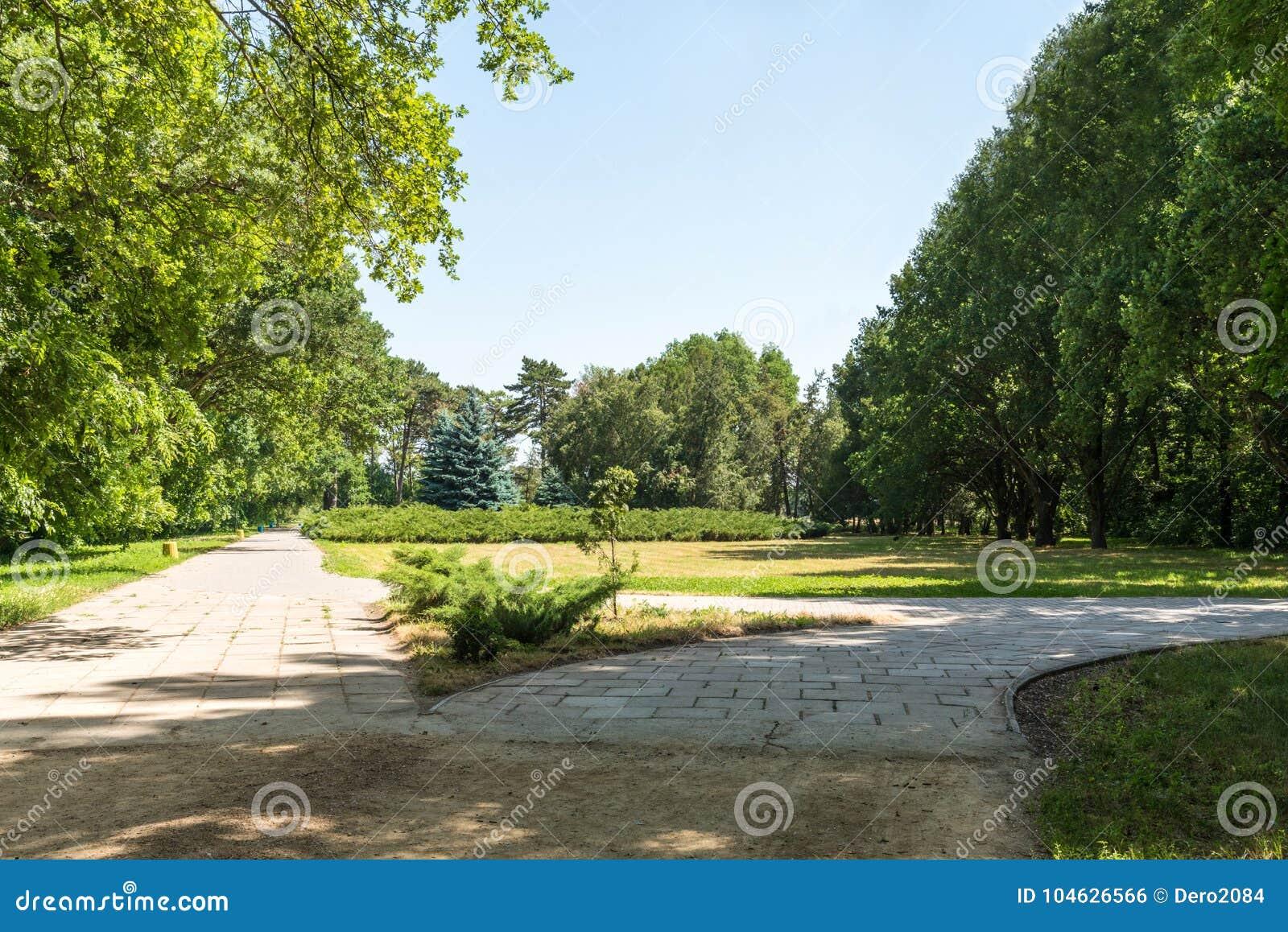 Download Landschap, Dendrological-Park Van De Nationale Reserve Askania-Nova, De Oekraïne Stock Foto - Afbeelding bestaande uit friedrich, groen: 104626566