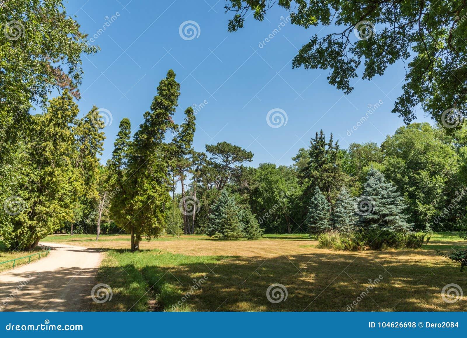 Download Landschap, Dendrological-Park Van De Nationale Reserve Askania-Nova, De Oekraïne Stock Foto - Afbeelding bestaande uit toerisme, onderzoek: 104626698
