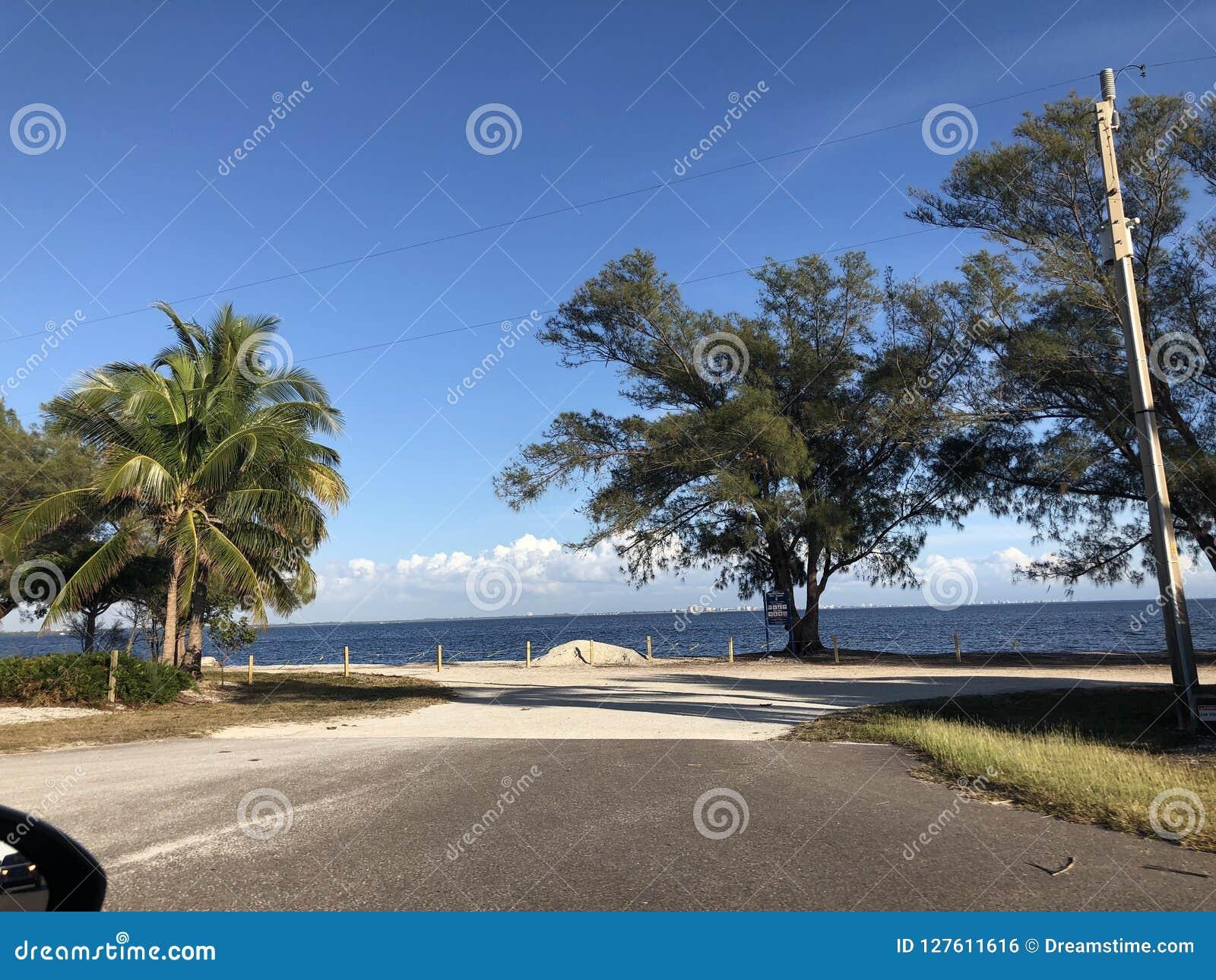 Landschap in Florida
