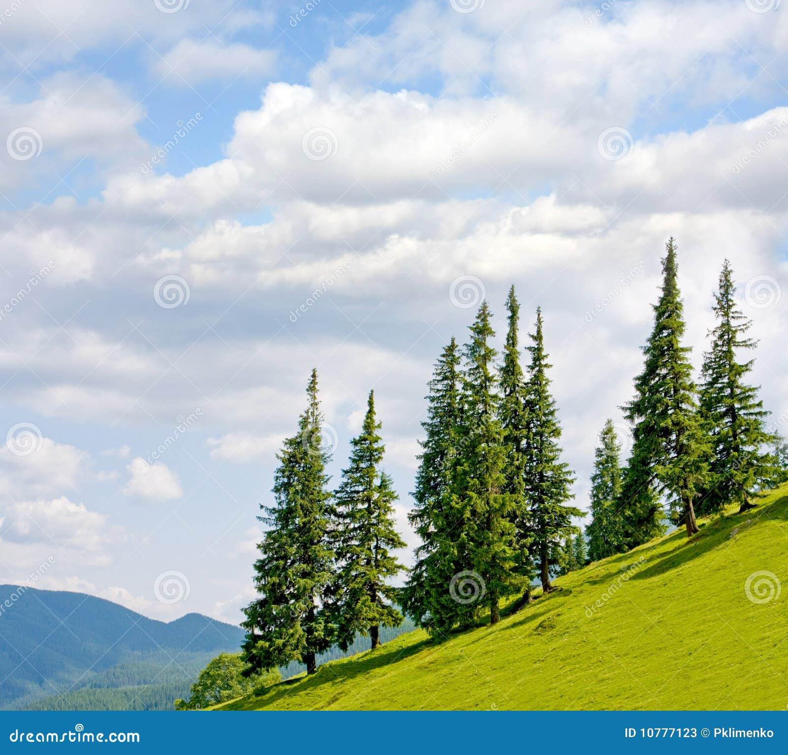Landschap met bomen op flank van heuvel