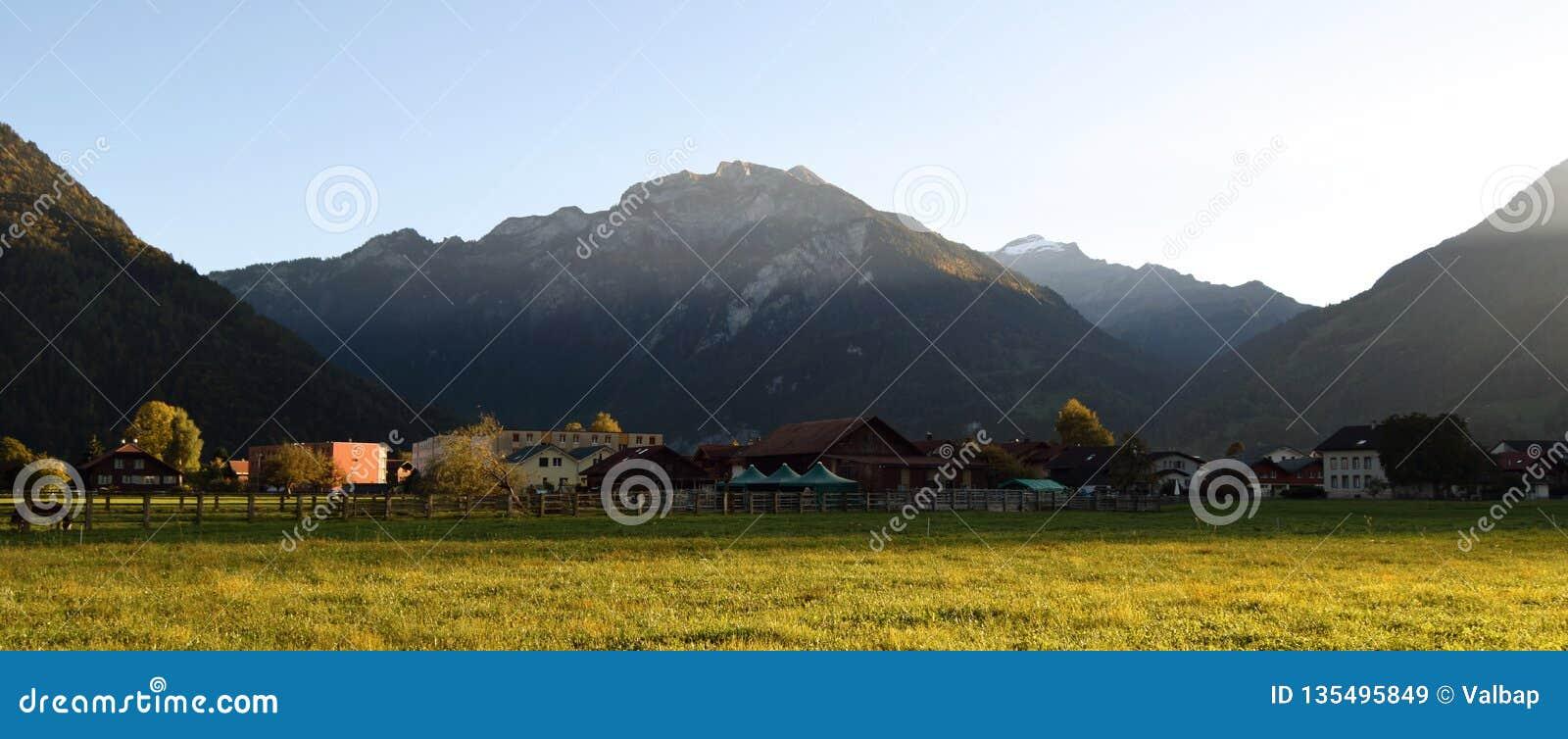 Landschap met gras, bergen, huizen, bomen en paarden