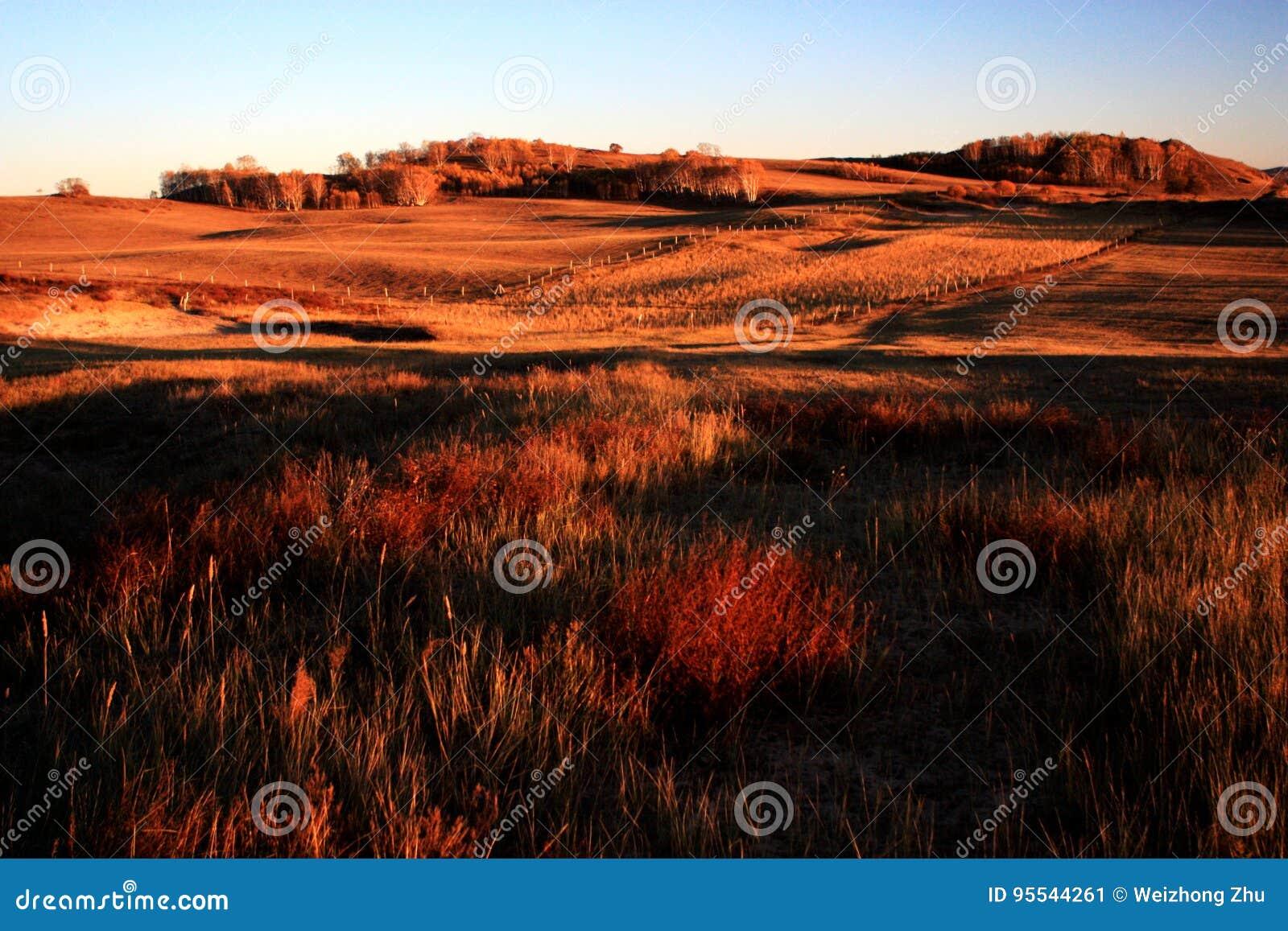 Landschap van Bashang-Weiden