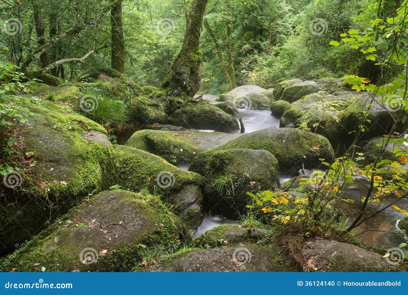 Landschap van Becky Falls-waterval in het Nationale Park Eng van Dartmoor