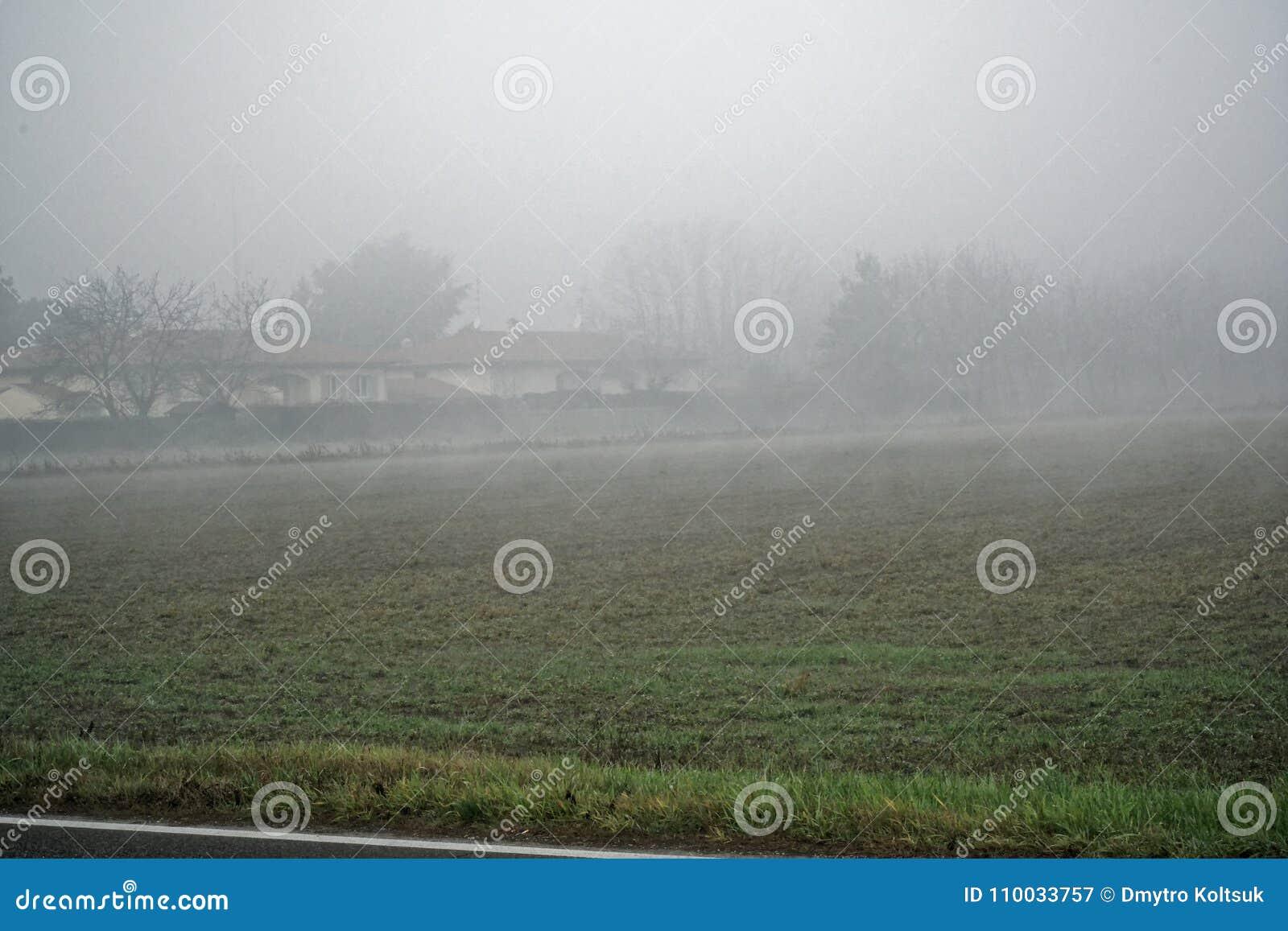 Landschap van dichte mist in het gebied en het silhouet van bomen in de warme winter